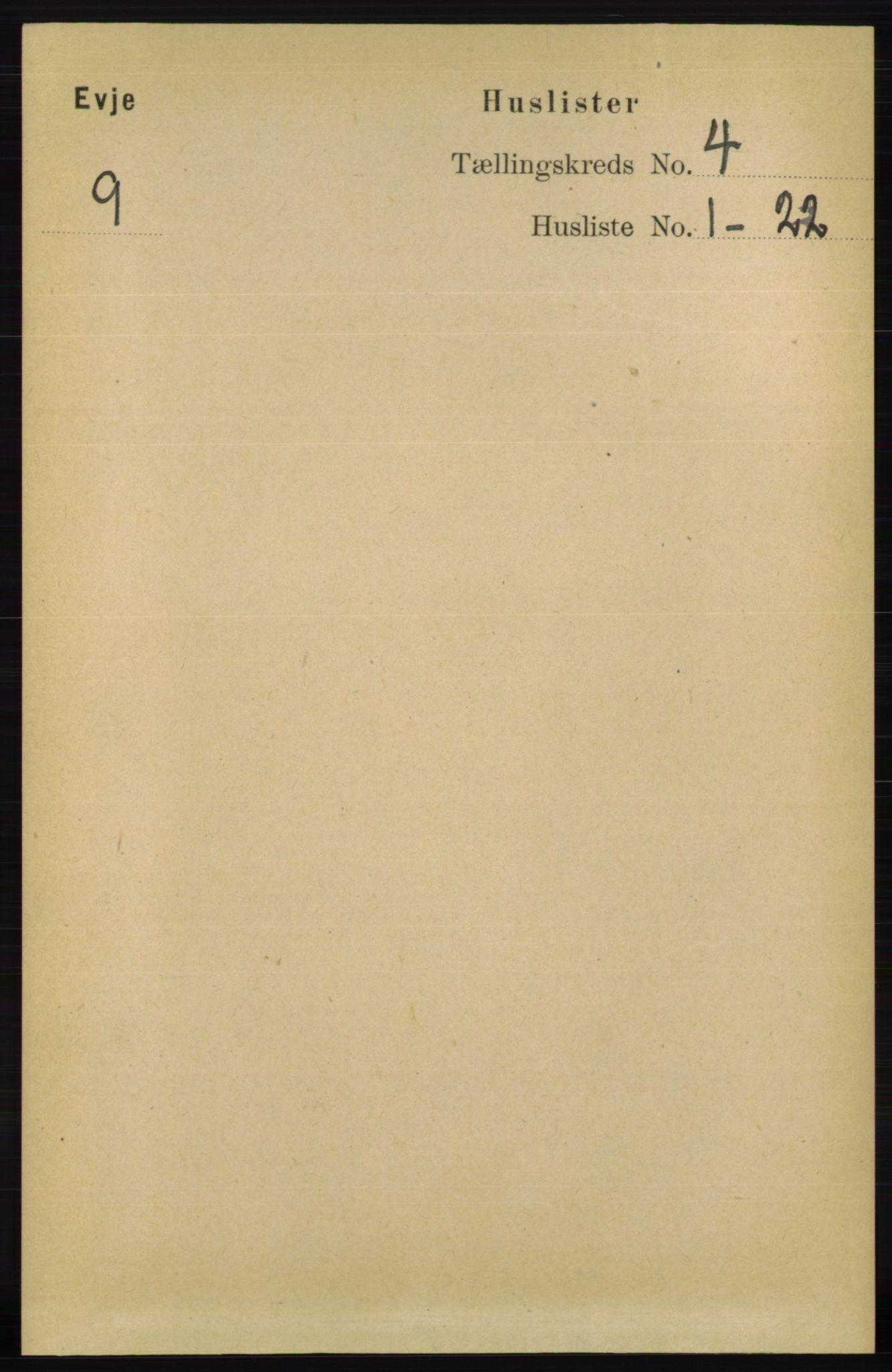 RA, Folketelling 1891 for 0937 Evje herred, 1891, s. 924