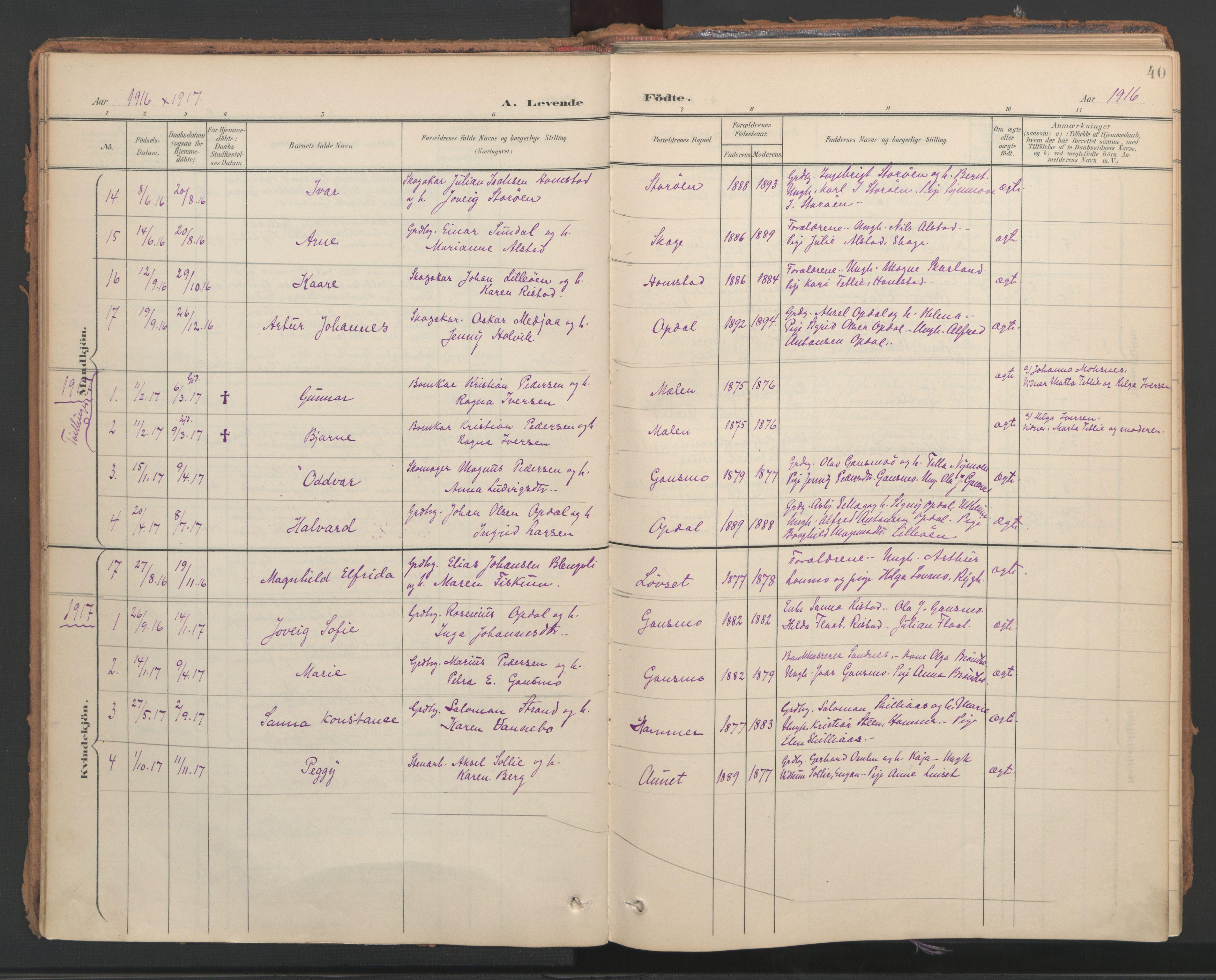 SAT, Ministerialprotokoller, klokkerbøker og fødselsregistre - Nord-Trøndelag, 766/L0564: Ministerialbok nr. 767A02, 1900-1932, s. 40