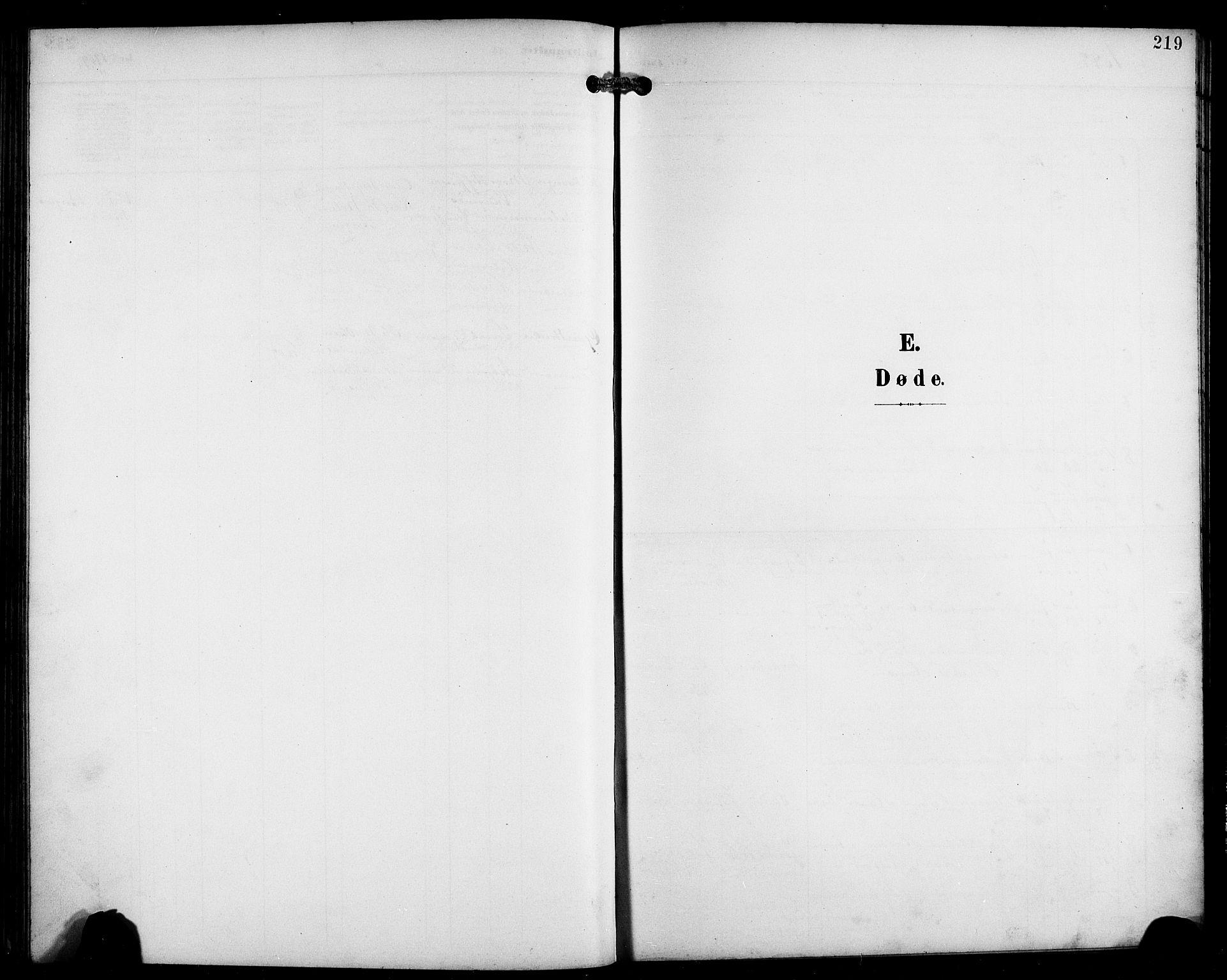 SAB, Laksevåg Sokneprestembete, H/Ha/Hab/Haba/L0004: Klokkerbok nr. A 4, 1899-1909, s. 219