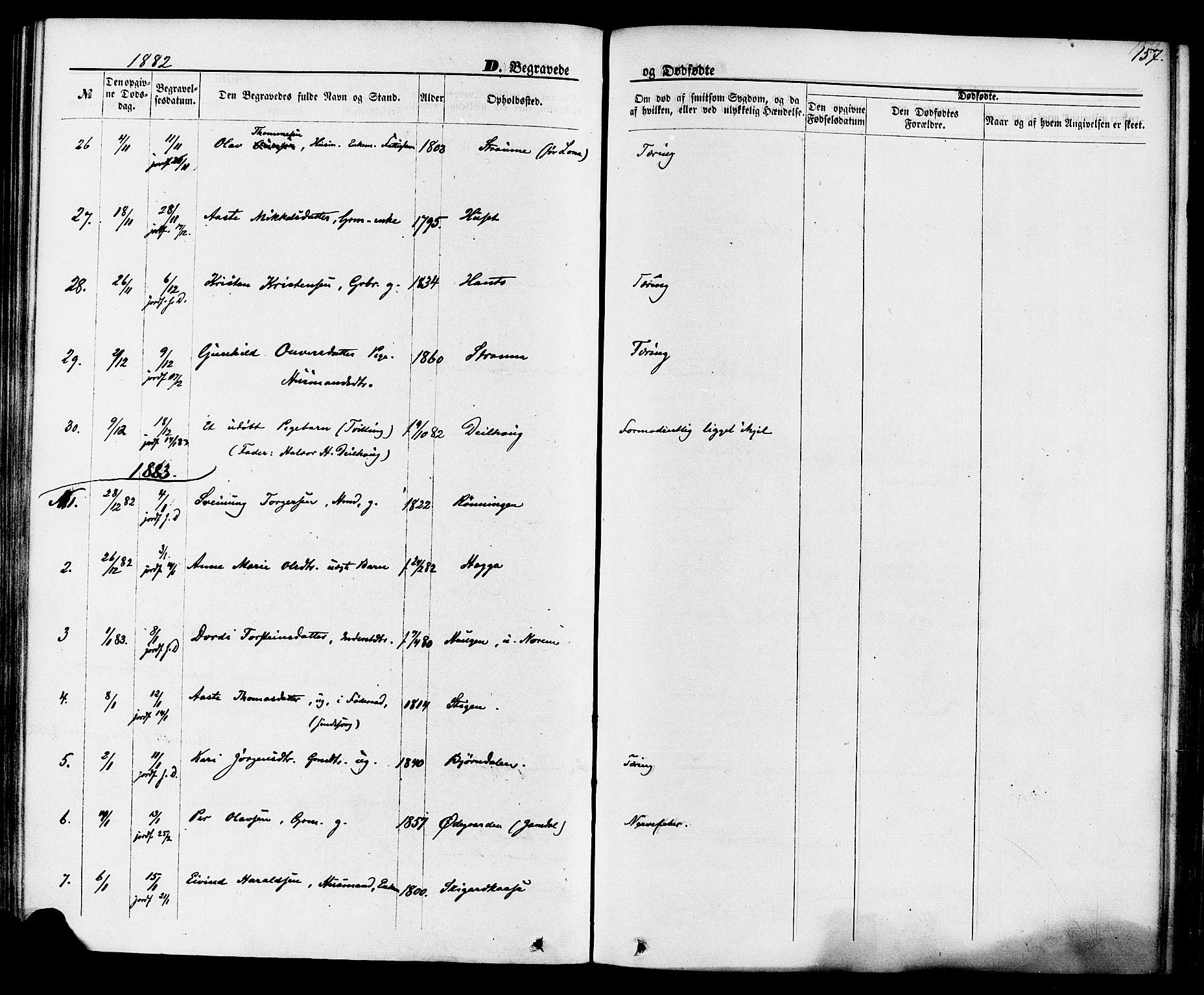 SAKO, Lunde kirkebøker, F/Fa/L0001: Ministerialbok nr. I 1, 1866-1883, s. 157