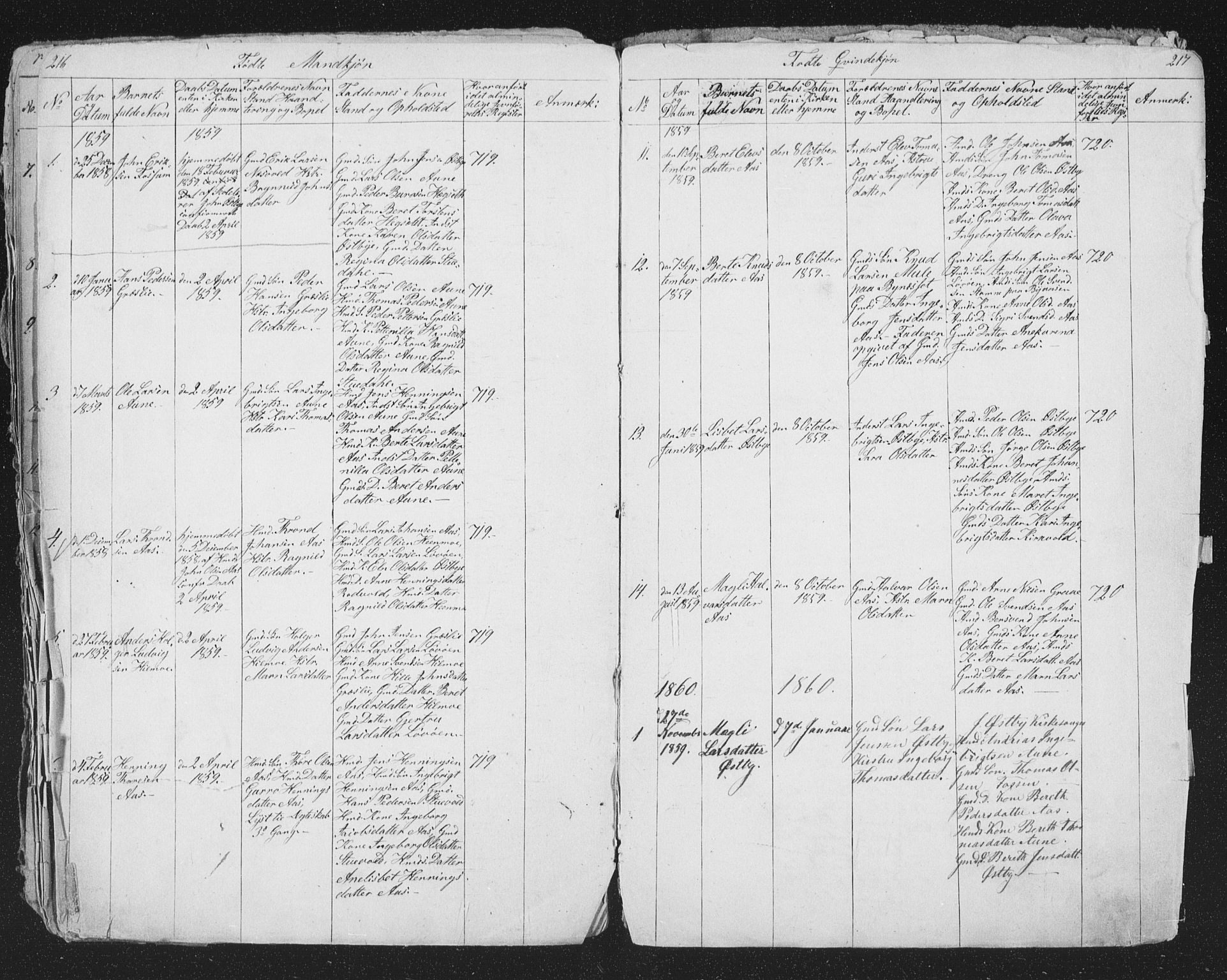 SAT, Ministerialprotokoller, klokkerbøker og fødselsregistre - Sør-Trøndelag, 698/L1165: Klokkerbok nr. 698C02, 1851-1861, s. 216-217