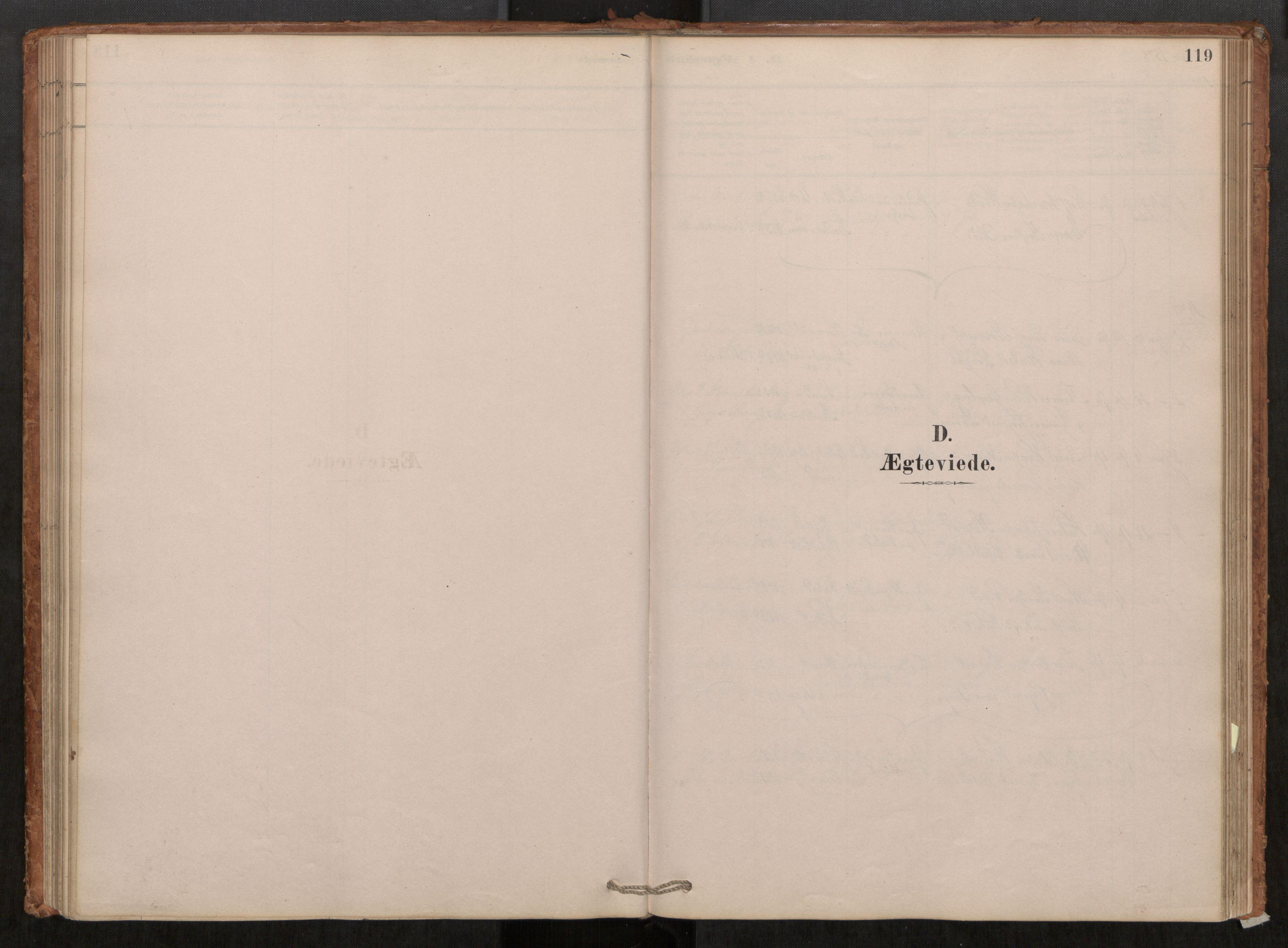 SAT, Grytten sokneprestkontor, Ministerialbok nr. 550A01, 1878-1915, s. 119