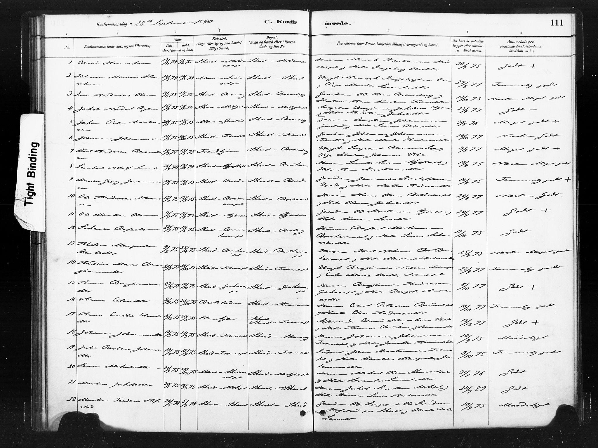 SAT, Ministerialprotokoller, klokkerbøker og fødselsregistre - Nord-Trøndelag, 736/L0361: Ministerialbok nr. 736A01, 1884-1906, s. 111
