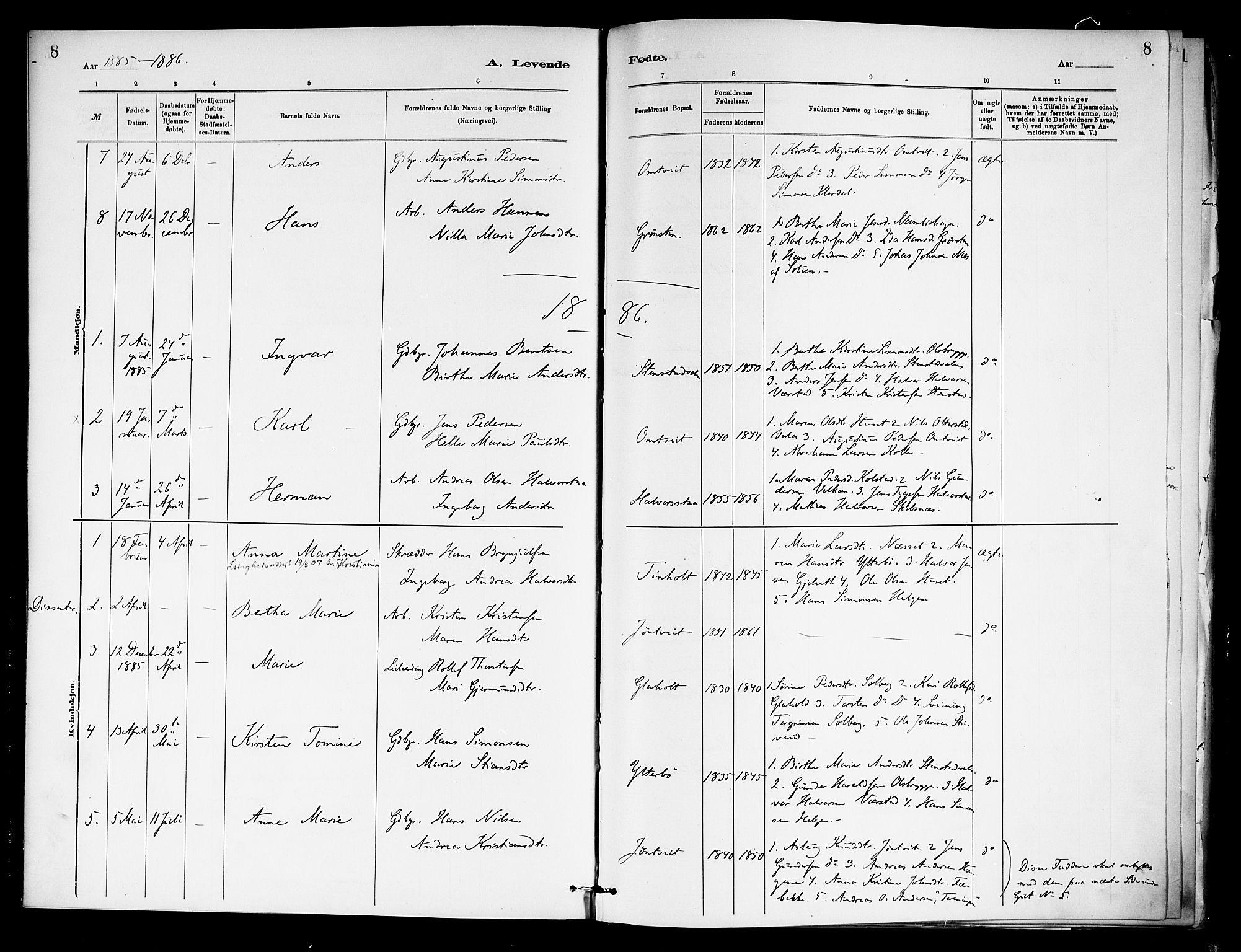 SAKO, Holla kirkebøker, F/Fa/L0009: Ministerialbok nr. 9, 1881-1897, s. 8