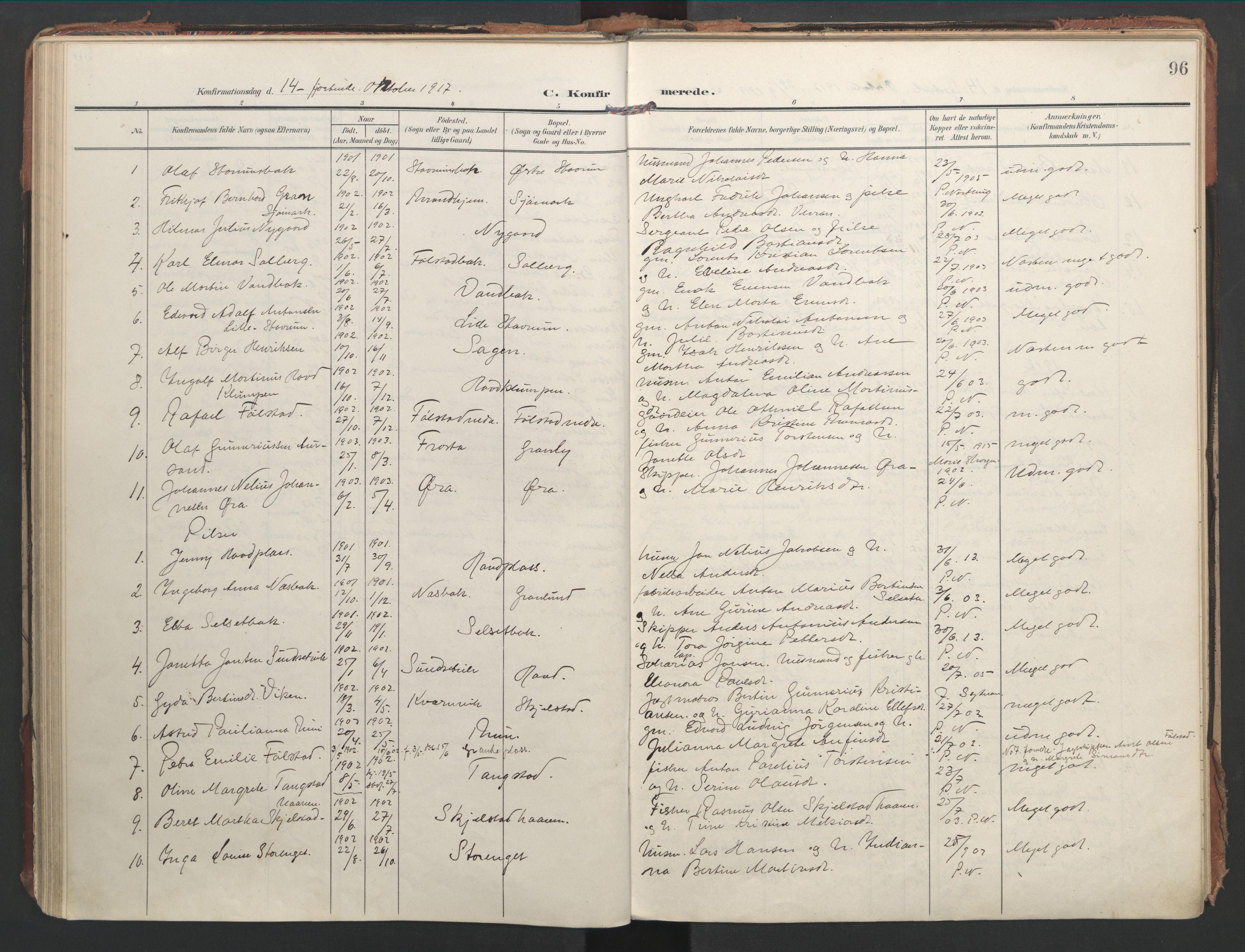 SAT, Ministerialprotokoller, klokkerbøker og fødselsregistre - Nord-Trøndelag, 744/L0421: Ministerialbok nr. 744A05, 1905-1930, s. 96