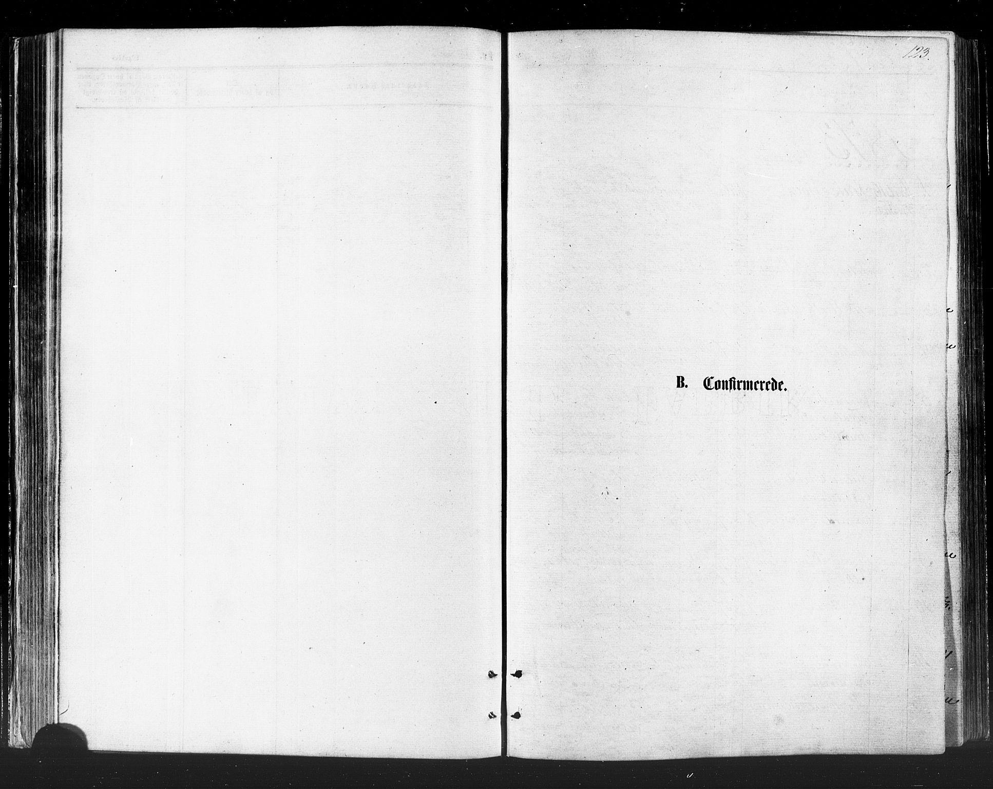 SATØ, Vadsø sokneprestkontor, H/Ha/L0005kirke: Ministerialbok nr. 5, 1873-1884, s. 123