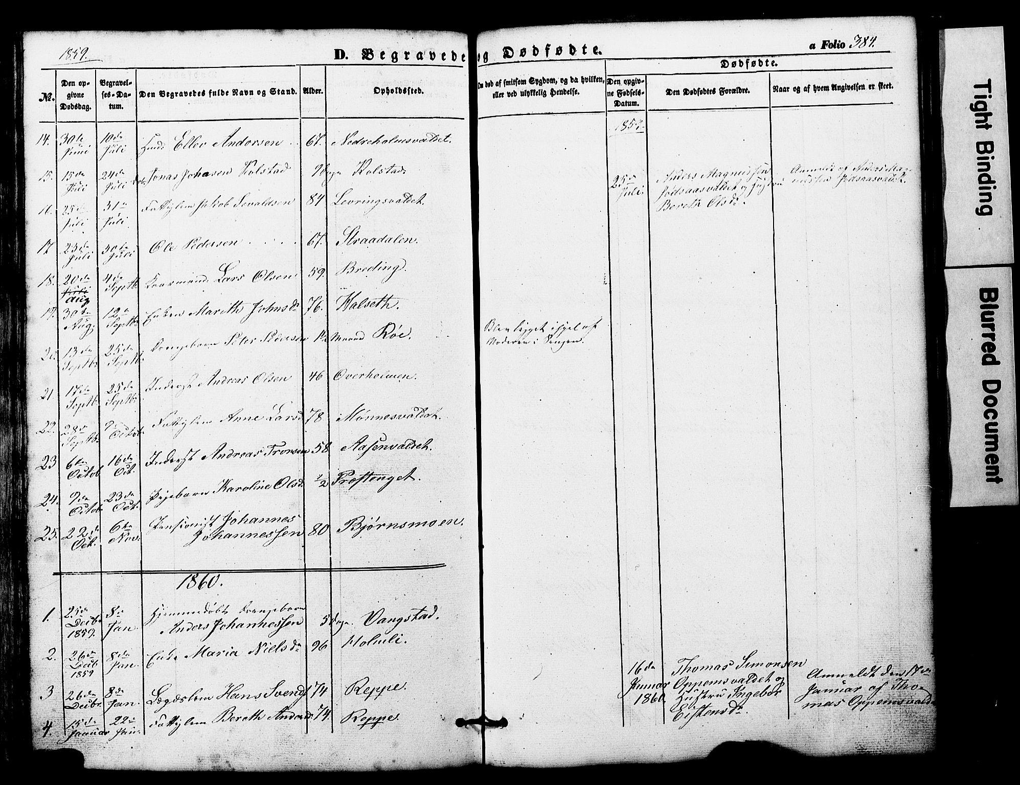 SAT, Ministerialprotokoller, klokkerbøker og fødselsregistre - Nord-Trøndelag, 724/L0268: Klokkerbok nr. 724C04, 1846-1878, s. 384