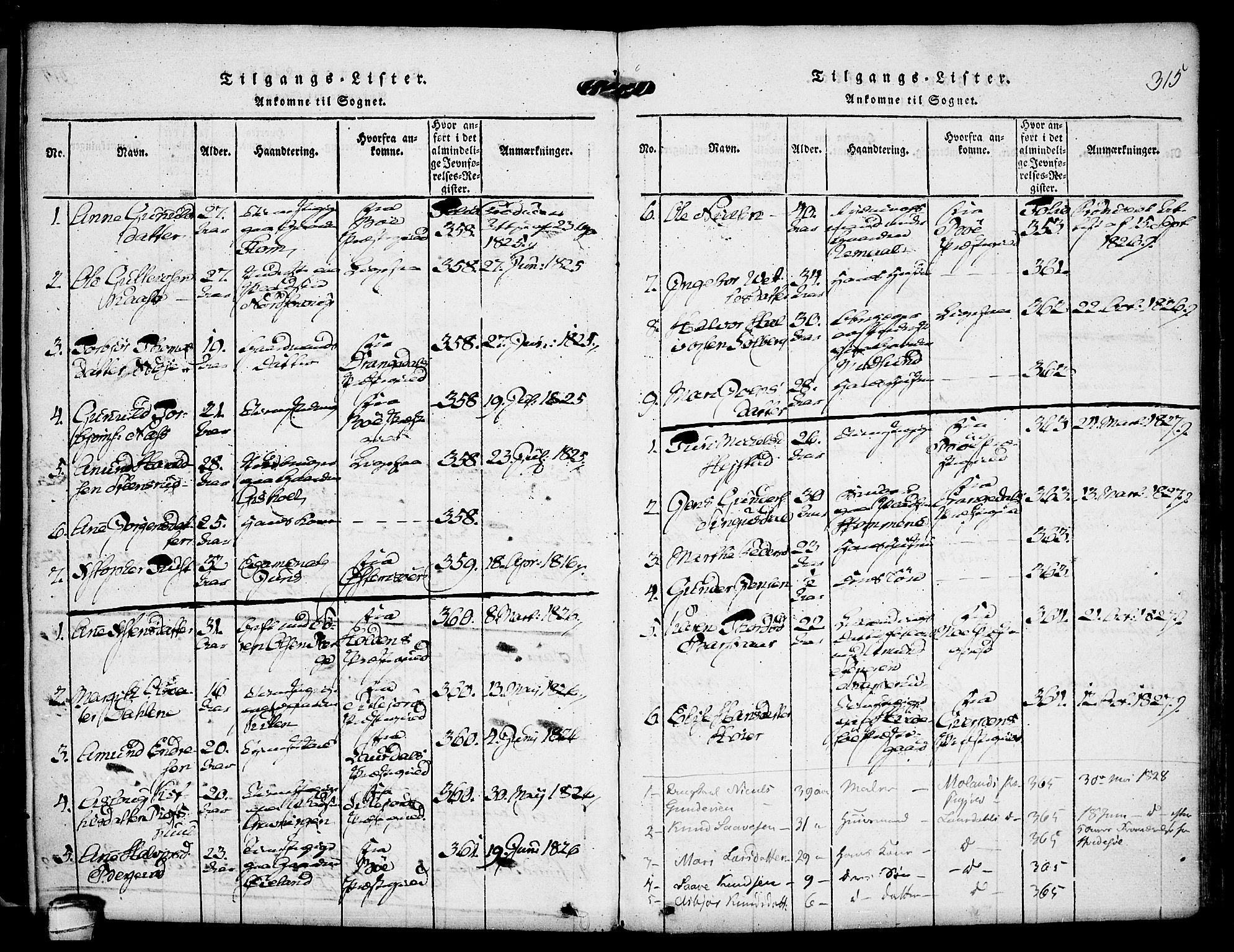 SAKO, Kviteseid kirkebøker, F/Fa/L0005: Ministerialbok nr. I 5, 1815-1836, s. 315