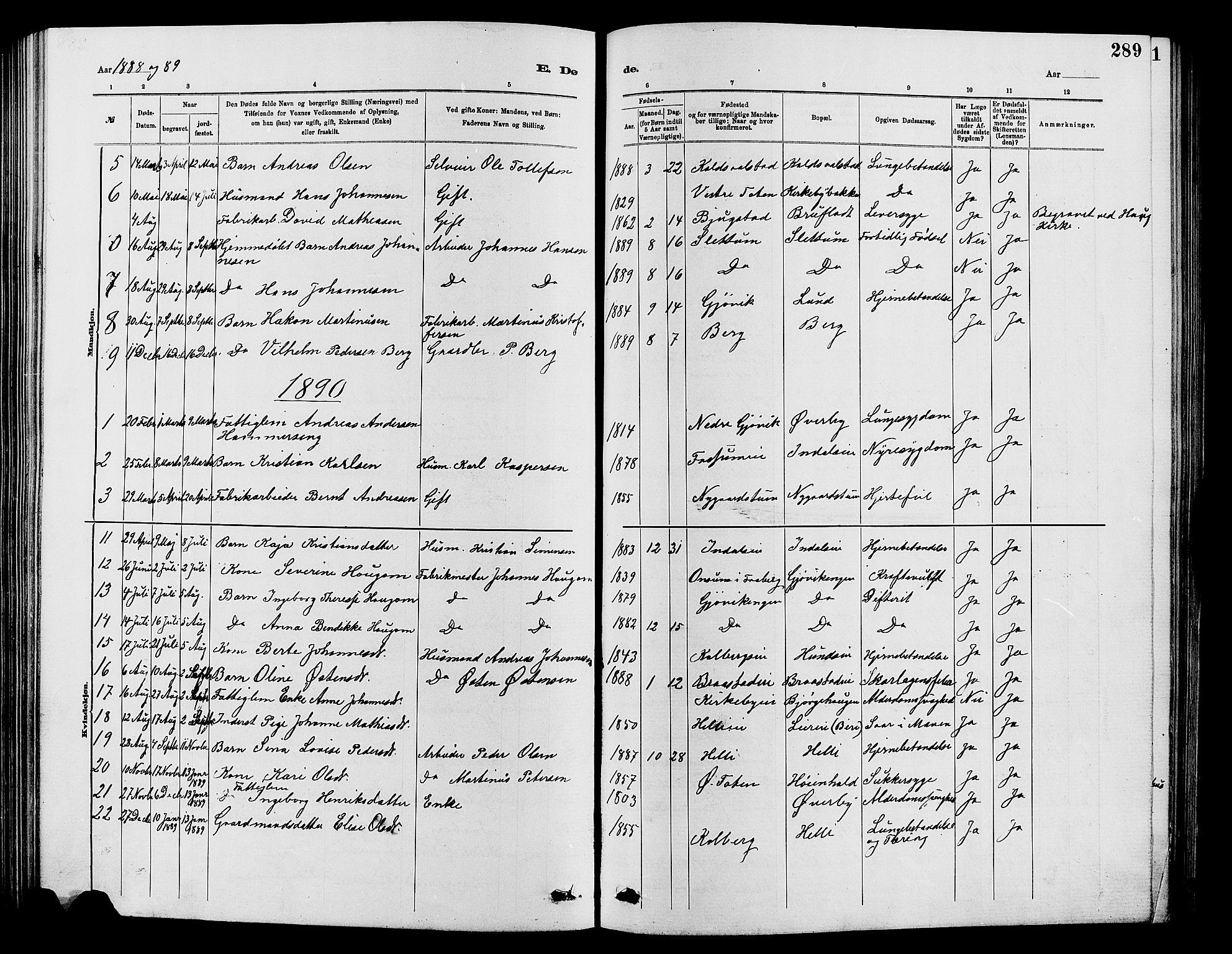 SAH, Vardal prestekontor, H/Ha/Hab/L0007: Klokkerbok nr. 7 /1, 1881-1895, s. 289