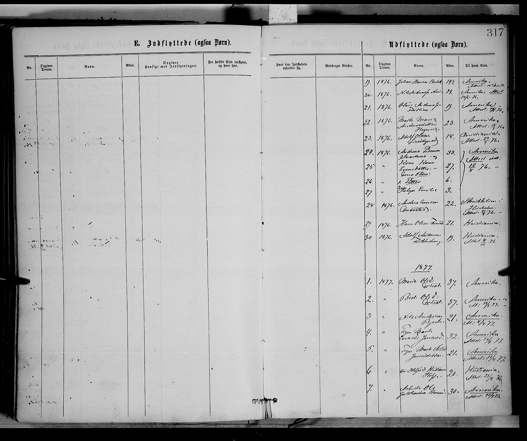SAH, Vestre Toten prestekontor, H/Ha/Haa/L0008: Ministerialbok nr. 8, 1870-1877, s. 317