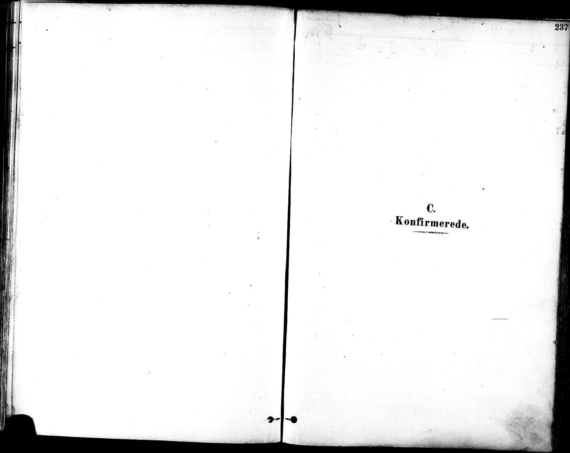 SAT, Ministerialprotokoller, klokkerbøker og fødselsregistre - Sør-Trøndelag, 601/L0057: Ministerialbok nr. 601A25, 1877-1891, s. 237