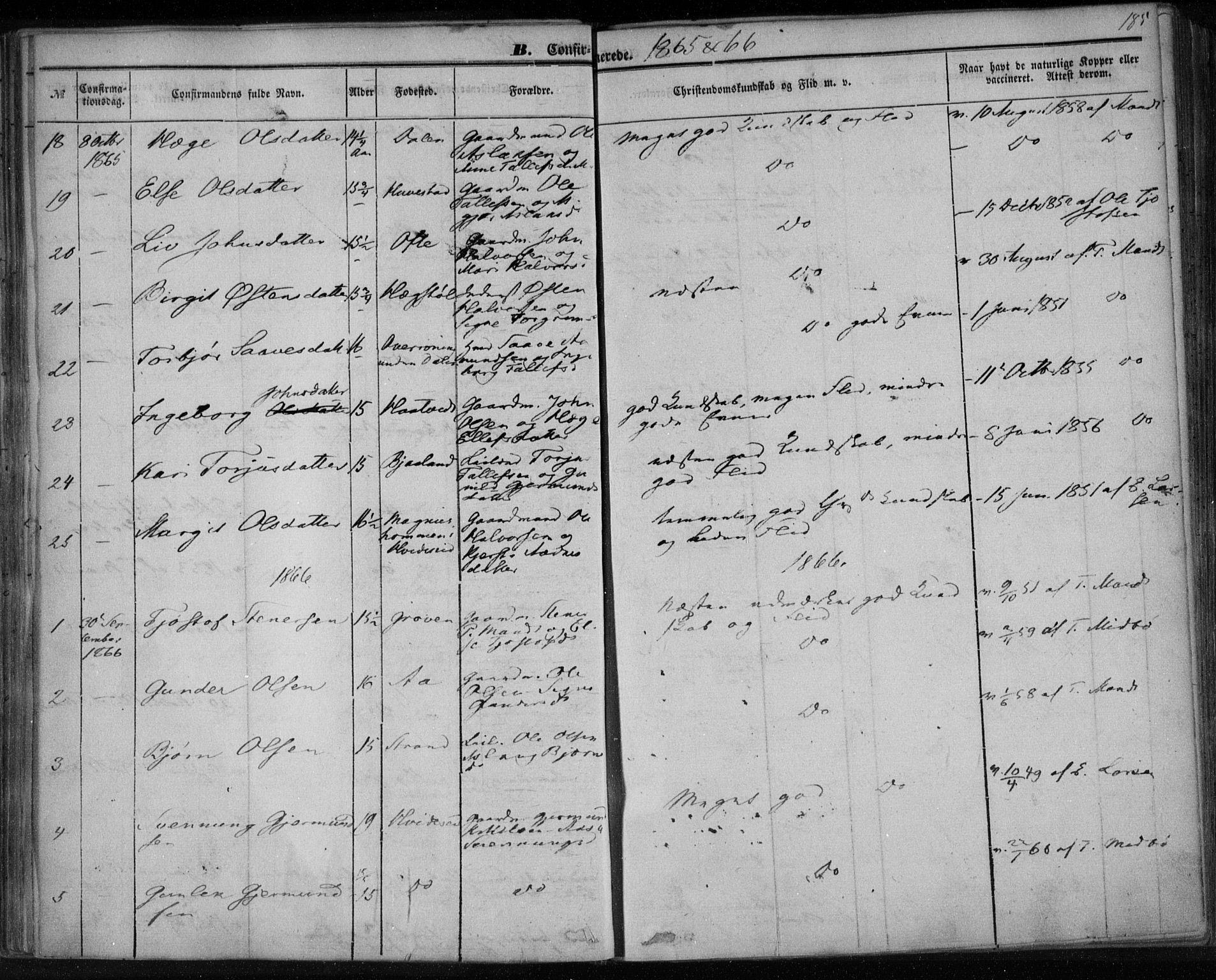 SAKO, Lårdal kirkebøker, F/Fa/L0006: Ministerialbok nr. I 6, 1861-1886, s. 185