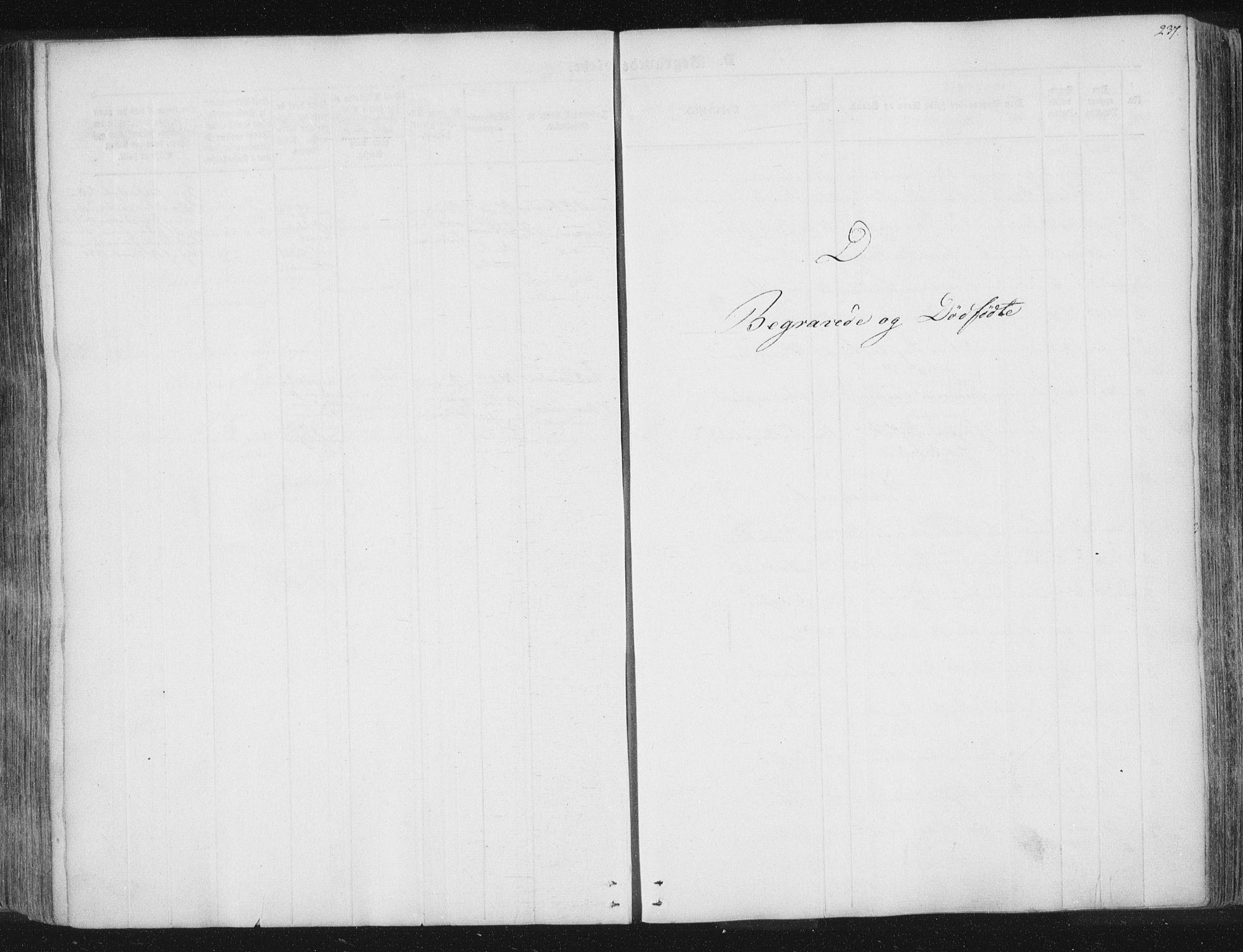 SAT, Ministerialprotokoller, klokkerbøker og fødselsregistre - Nord-Trøndelag, 741/L0392: Ministerialbok nr. 741A06, 1836-1848, s. 237
