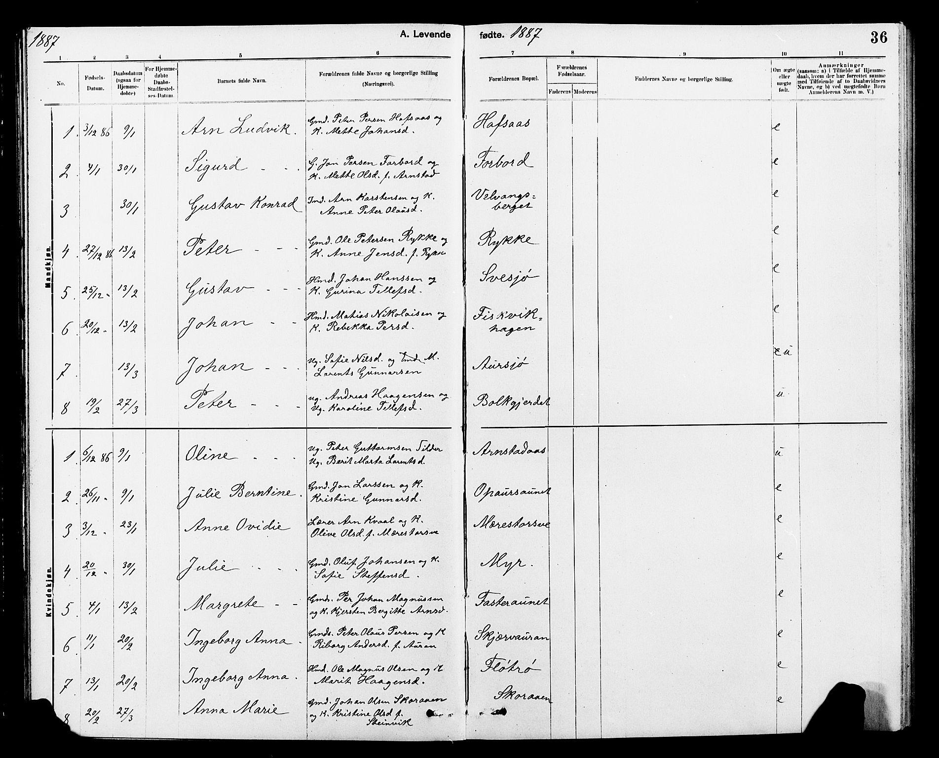 SAT, Ministerialprotokoller, klokkerbøker og fødselsregistre - Nord-Trøndelag, 712/L0103: Klokkerbok nr. 712C01, 1878-1917, s. 36
