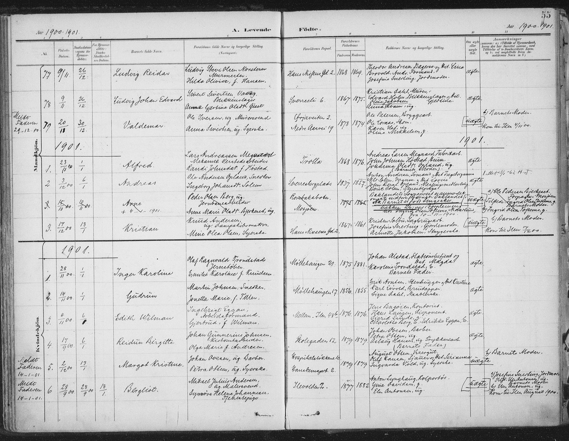 SAT, Ministerialprotokoller, klokkerbøker og fødselsregistre - Sør-Trøndelag, 603/L0167: Ministerialbok nr. 603A06, 1896-1932, s. 55