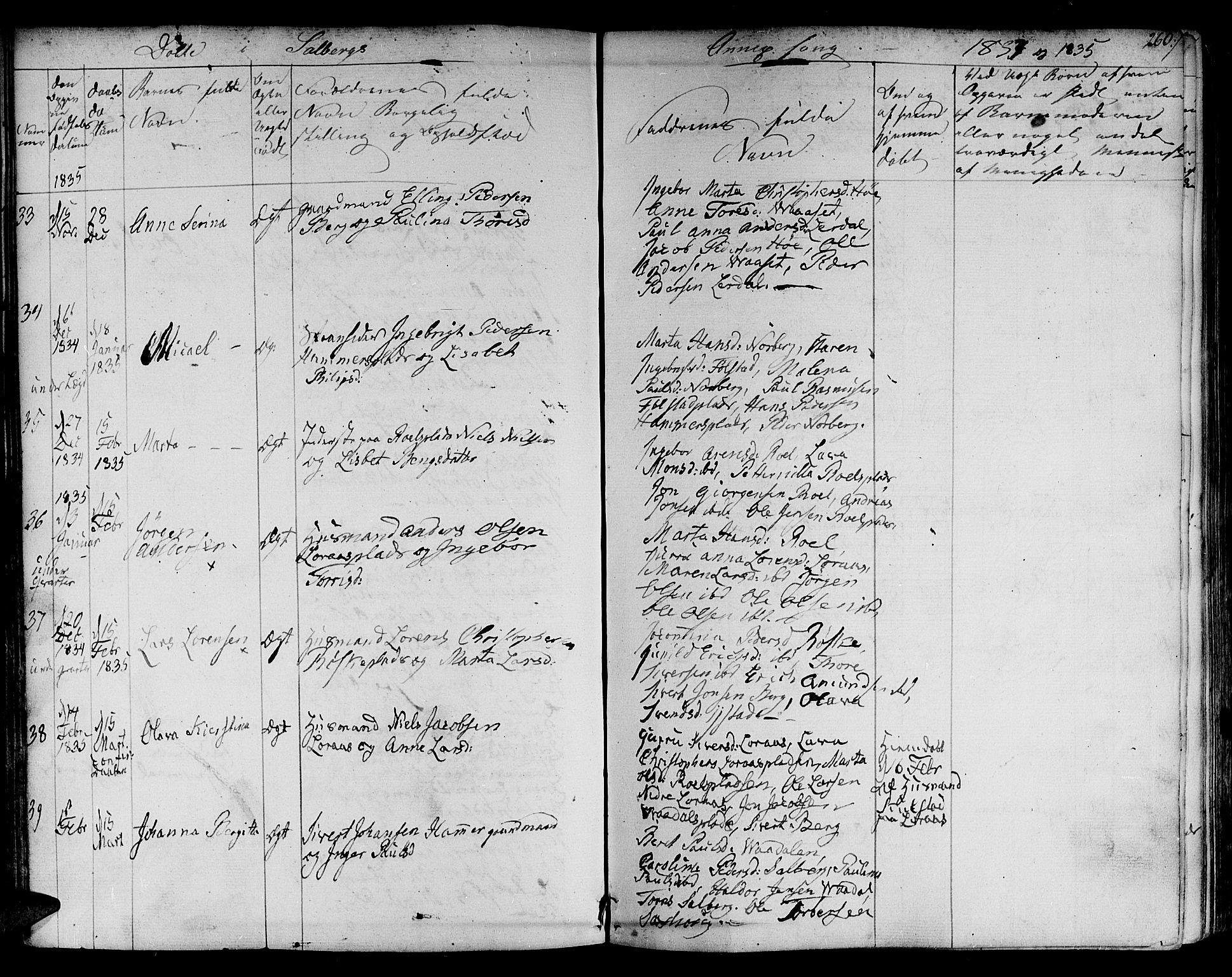SAT, Ministerialprotokoller, klokkerbøker og fødselsregistre - Nord-Trøndelag, 730/L0277: Ministerialbok nr. 730A06 /2, 1831-1839, s. 260