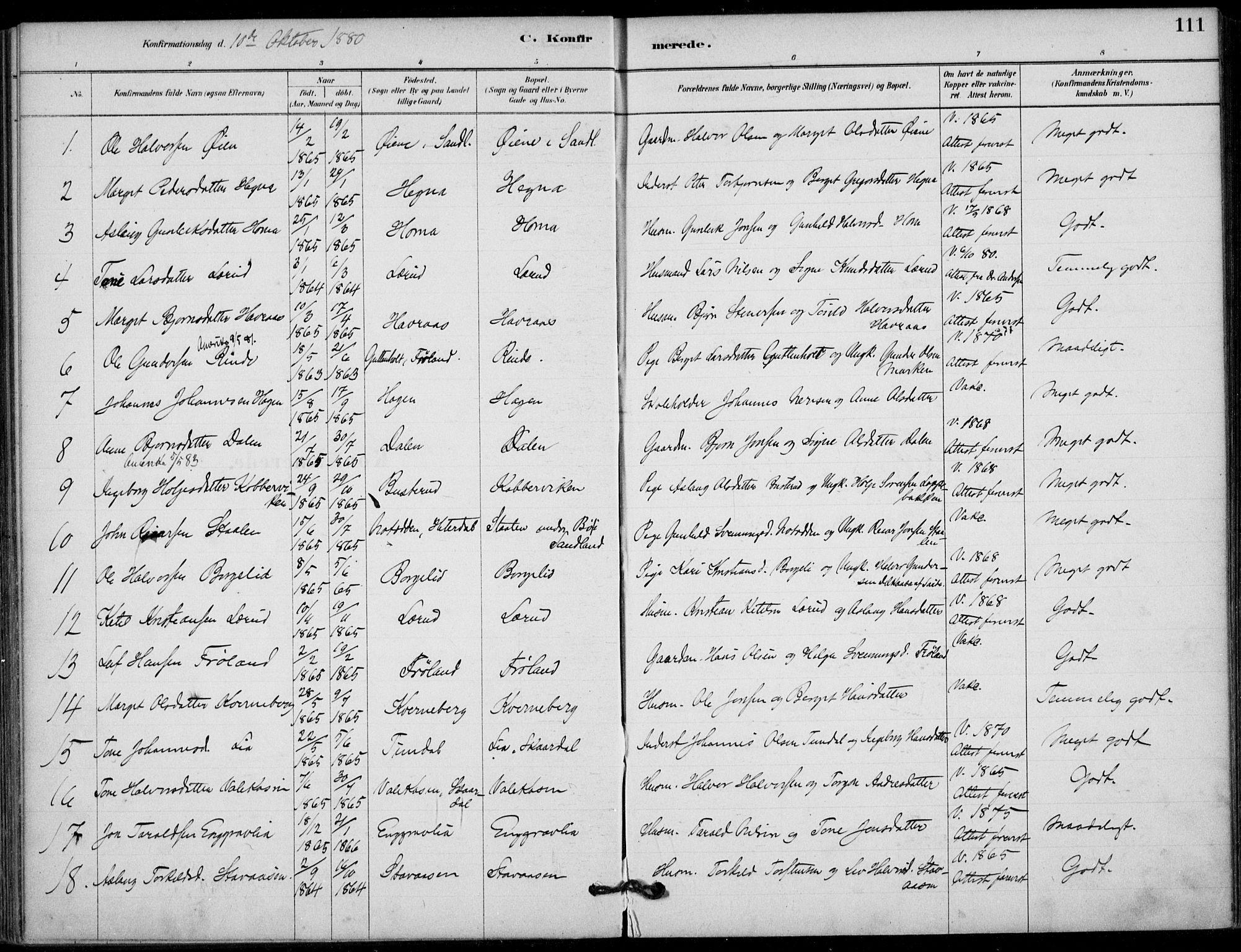 SAKO, Hjartdal kirkebøker, F/Fb/L0002: Ministerialbok nr. II 2, 1880-1932, s. 111