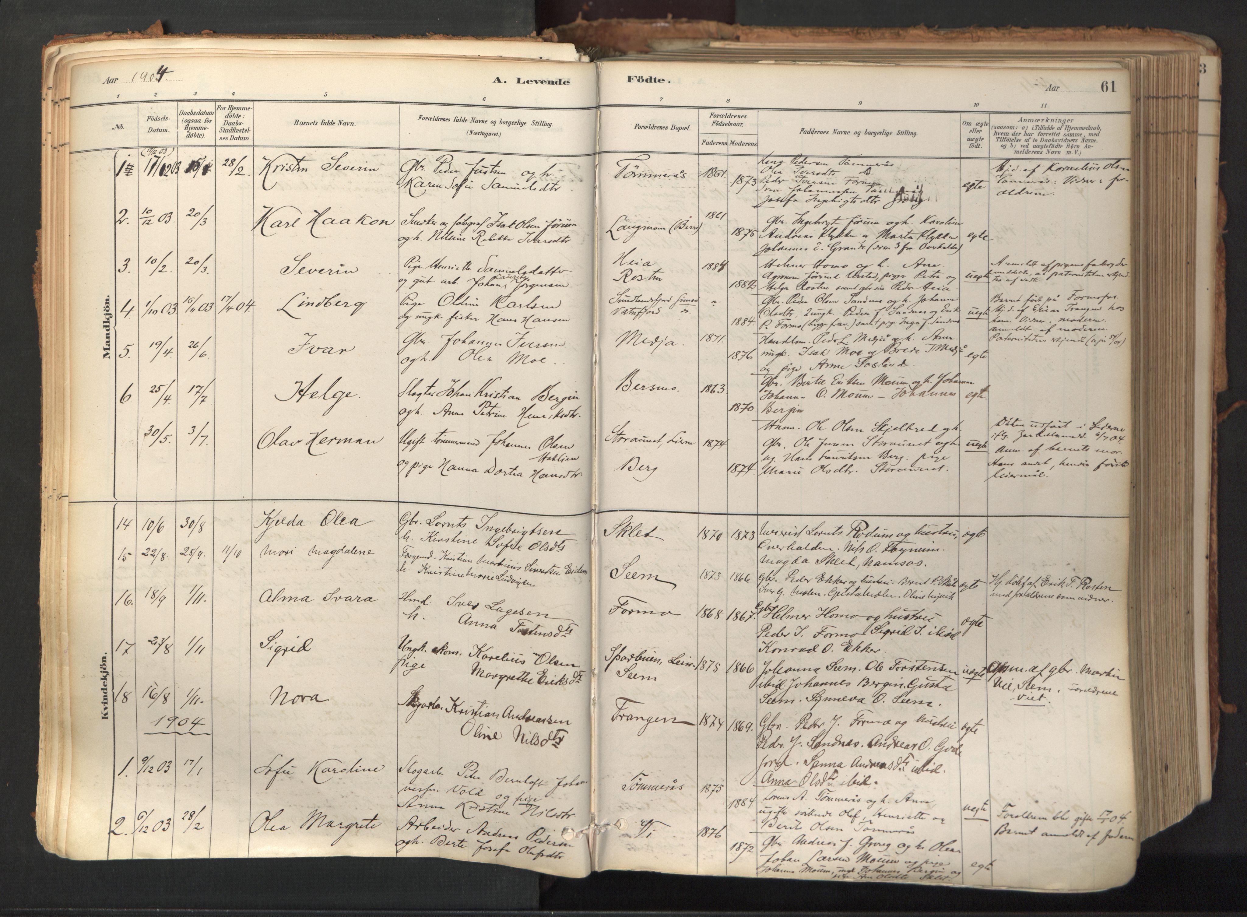 SAT, Ministerialprotokoller, klokkerbøker og fødselsregistre - Nord-Trøndelag, 758/L0519: Ministerialbok nr. 758A04, 1880-1926, s. 61