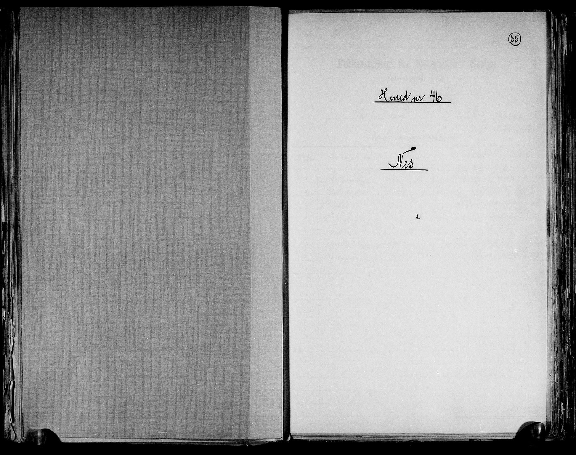 RA, Folketelling 1891 for 0411 Nes herred, 1891, s. 1