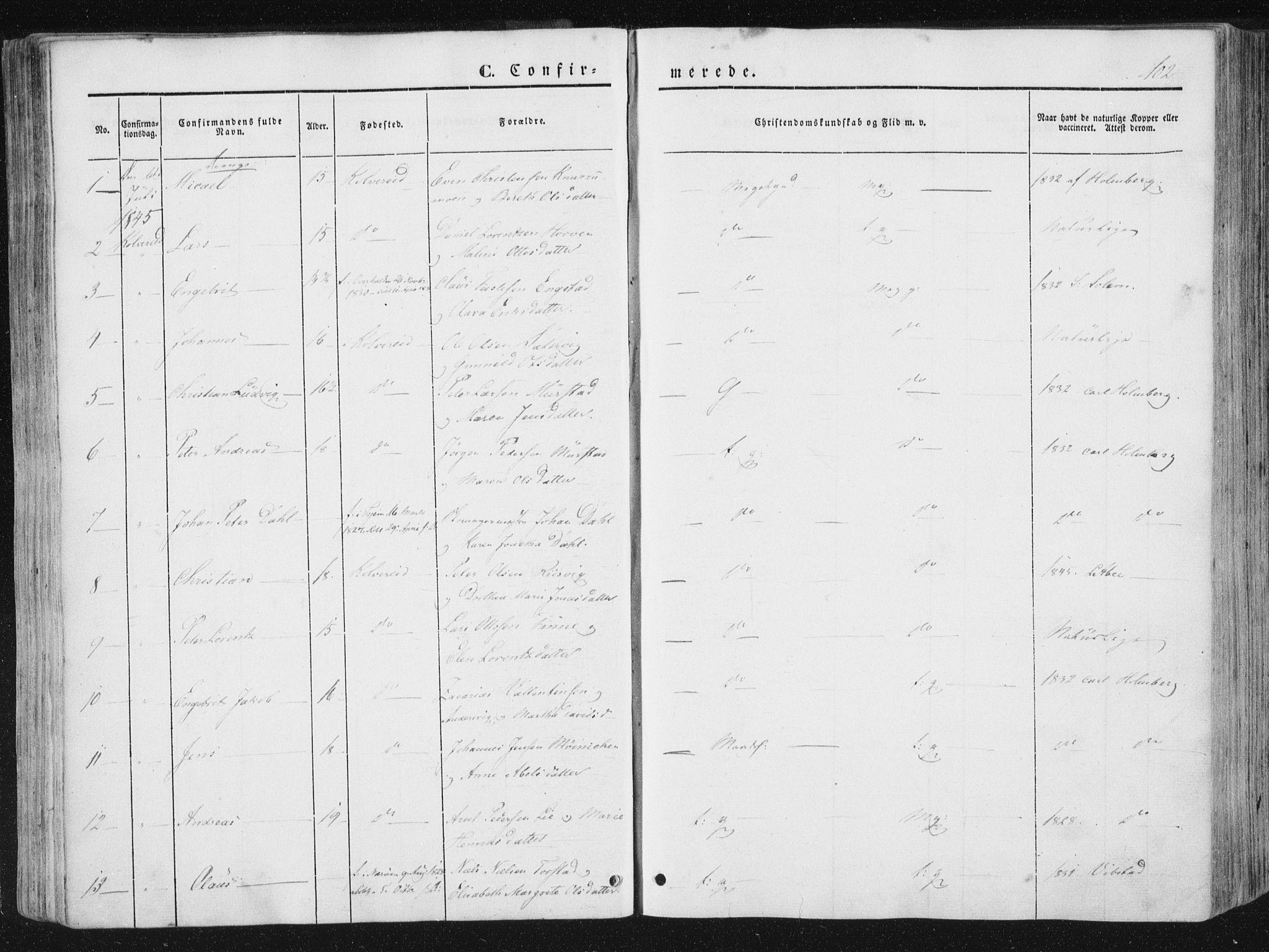 SAT, Ministerialprotokoller, klokkerbøker og fødselsregistre - Nord-Trøndelag, 780/L0640: Ministerialbok nr. 780A05, 1845-1856, s. 102
