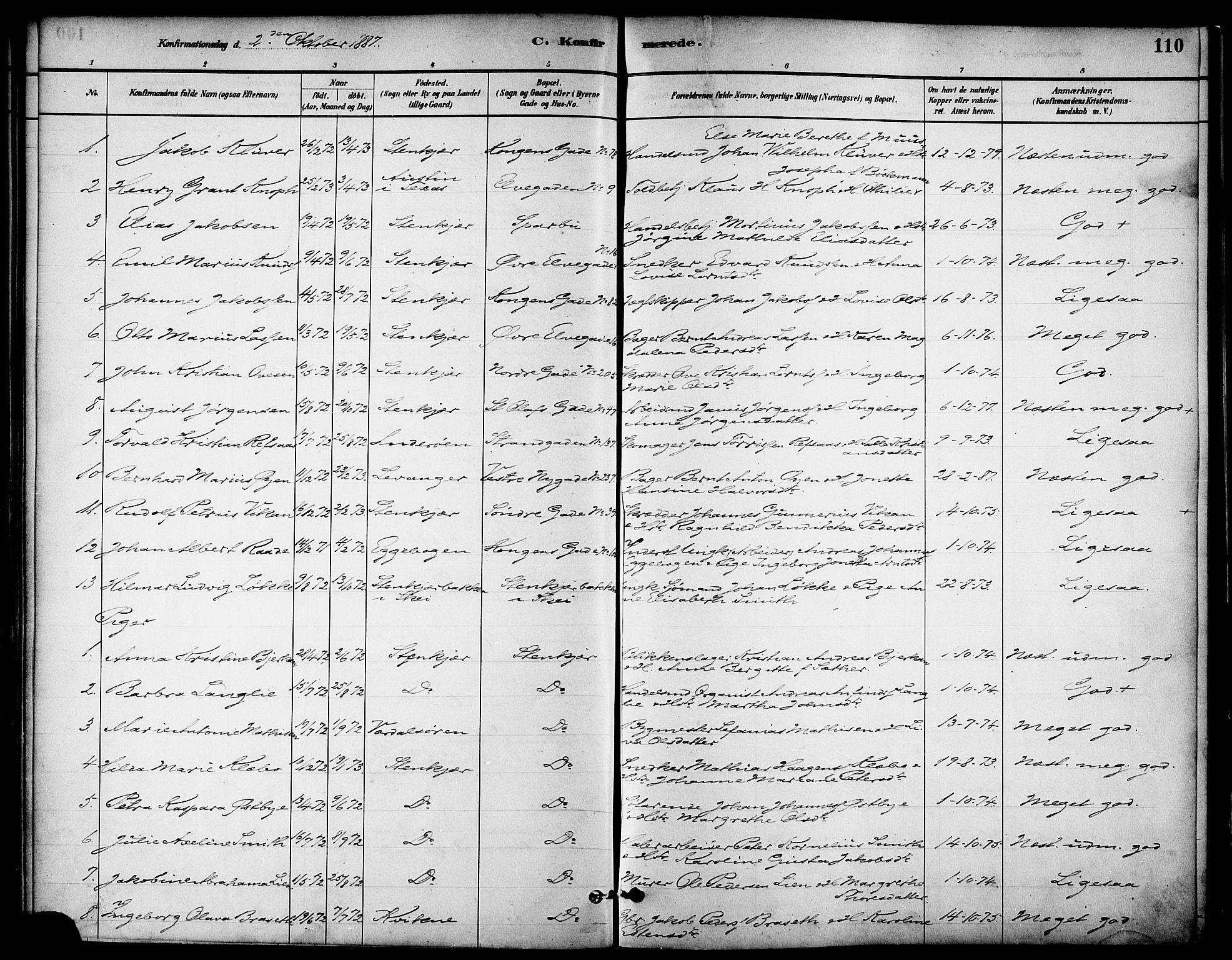 SAT, Ministerialprotokoller, klokkerbøker og fødselsregistre - Nord-Trøndelag, 739/L0371: Ministerialbok nr. 739A03, 1881-1895, s. 110