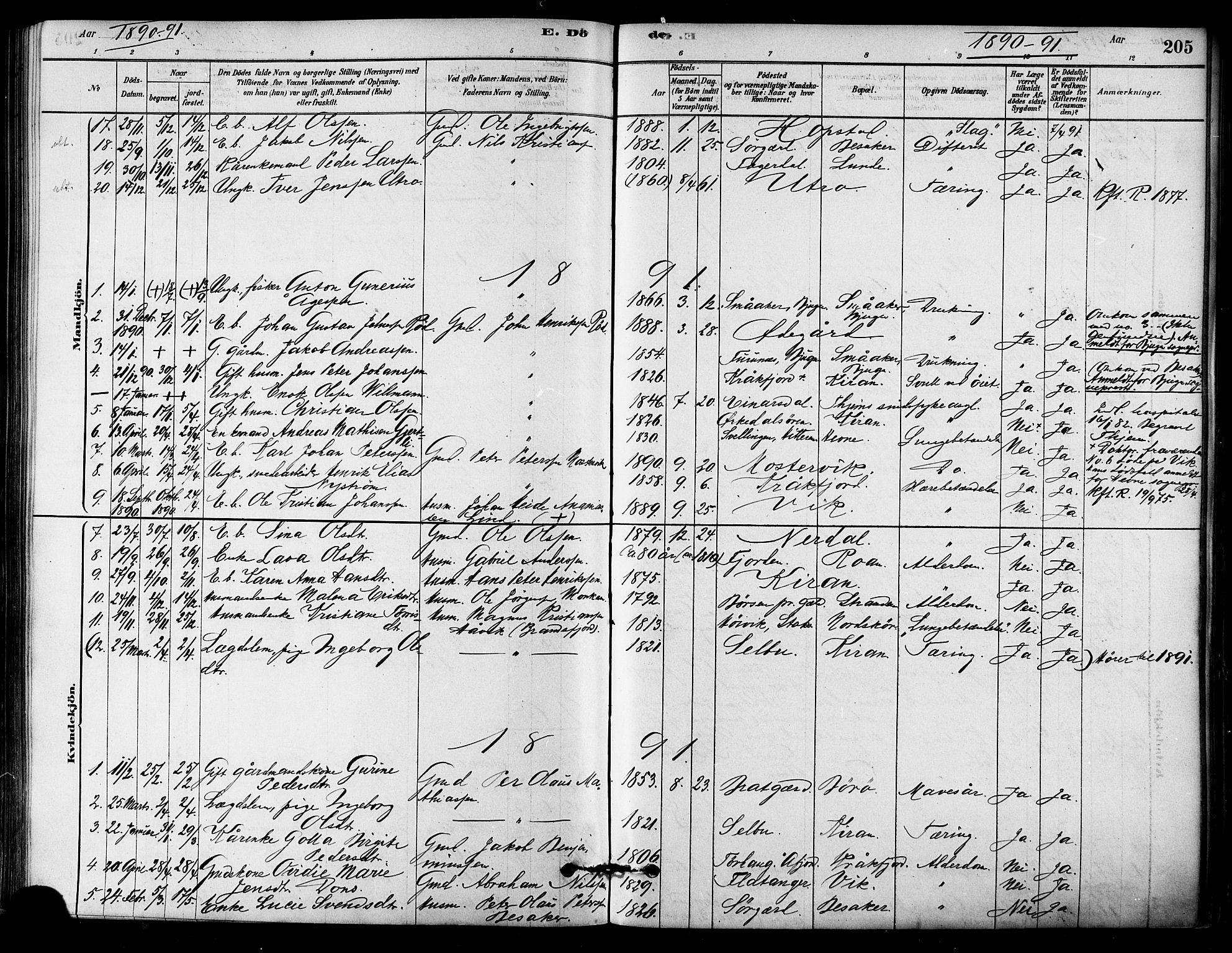 SAT, Ministerialprotokoller, klokkerbøker og fødselsregistre - Sør-Trøndelag, 657/L0707: Ministerialbok nr. 657A08, 1879-1893, s. 205