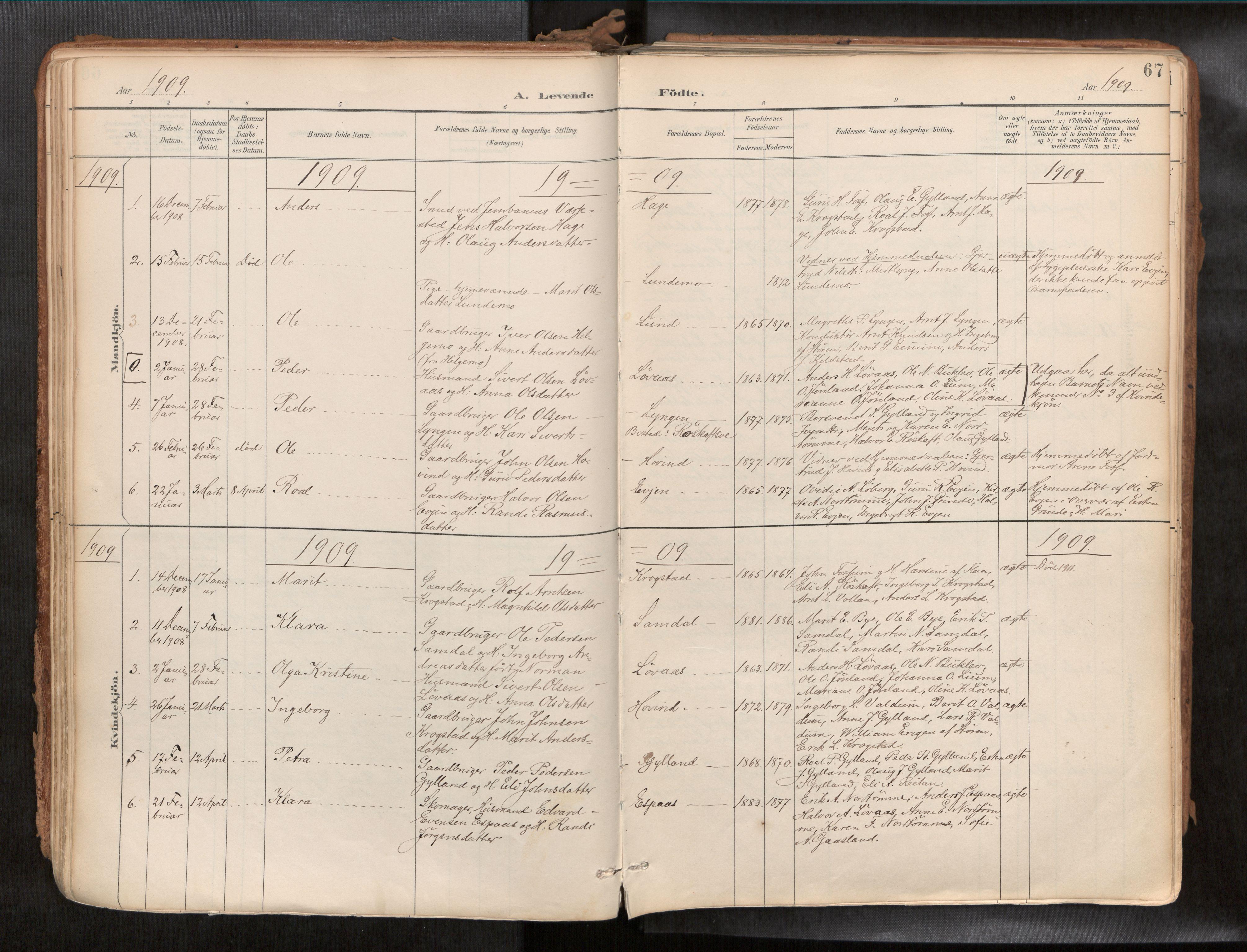 SAT, Ministerialprotokoller, klokkerbøker og fødselsregistre - Sør-Trøndelag, 692/L1105b: Ministerialbok nr. 692A06, 1891-1934, s. 67