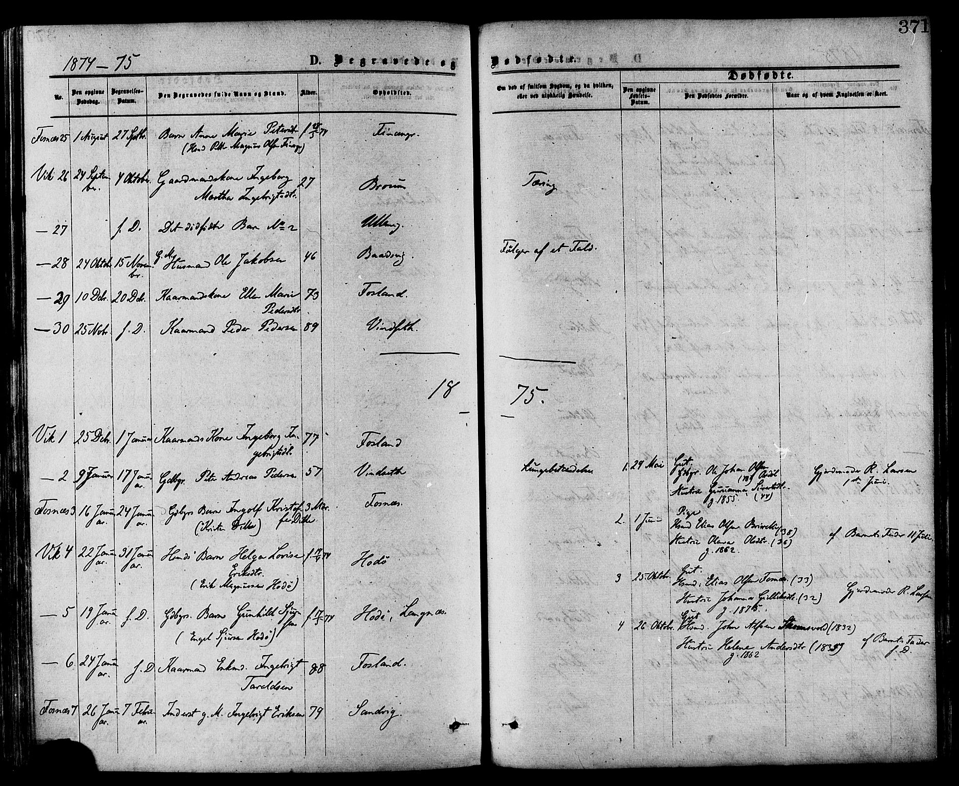 SAT, Ministerialprotokoller, klokkerbøker og fødselsregistre - Nord-Trøndelag, 773/L0616: Ministerialbok nr. 773A07, 1870-1887, s. 371