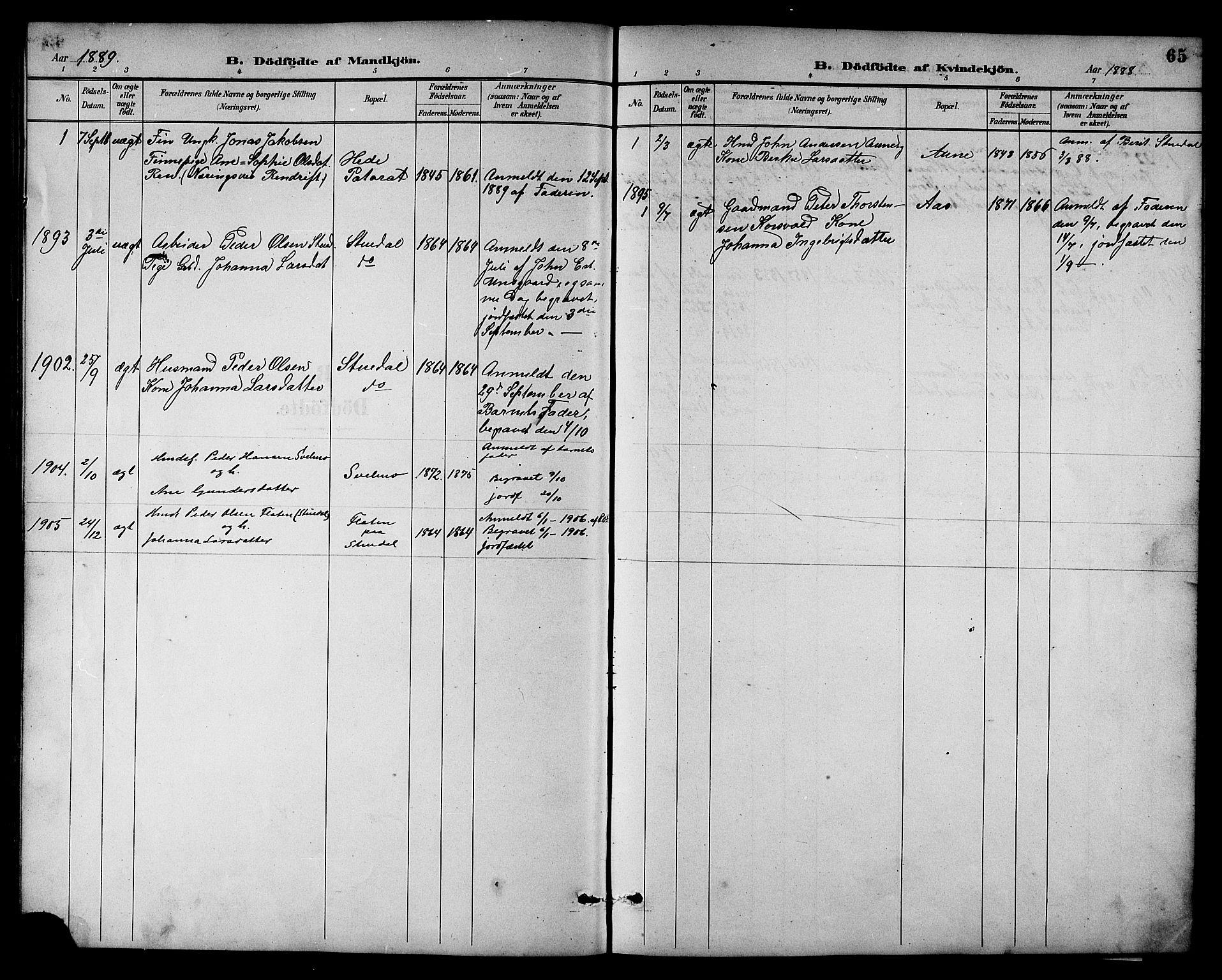 SAT, Ministerialprotokoller, klokkerbøker og fødselsregistre - Sør-Trøndelag, 698/L1167: Klokkerbok nr. 698C04, 1888-1907, s. 65