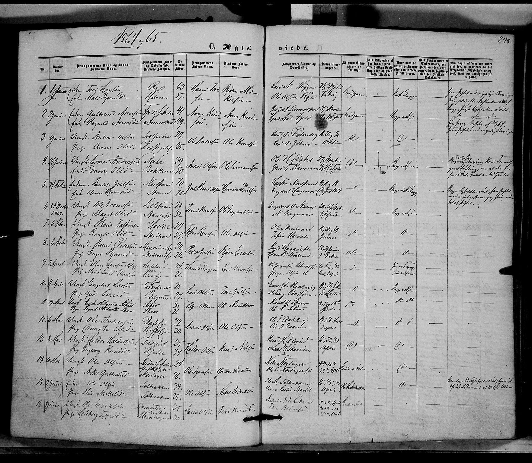 SAH, Nord-Aurdal prestekontor, Ministerialbok nr. 8, 1863-1875, s. 248
