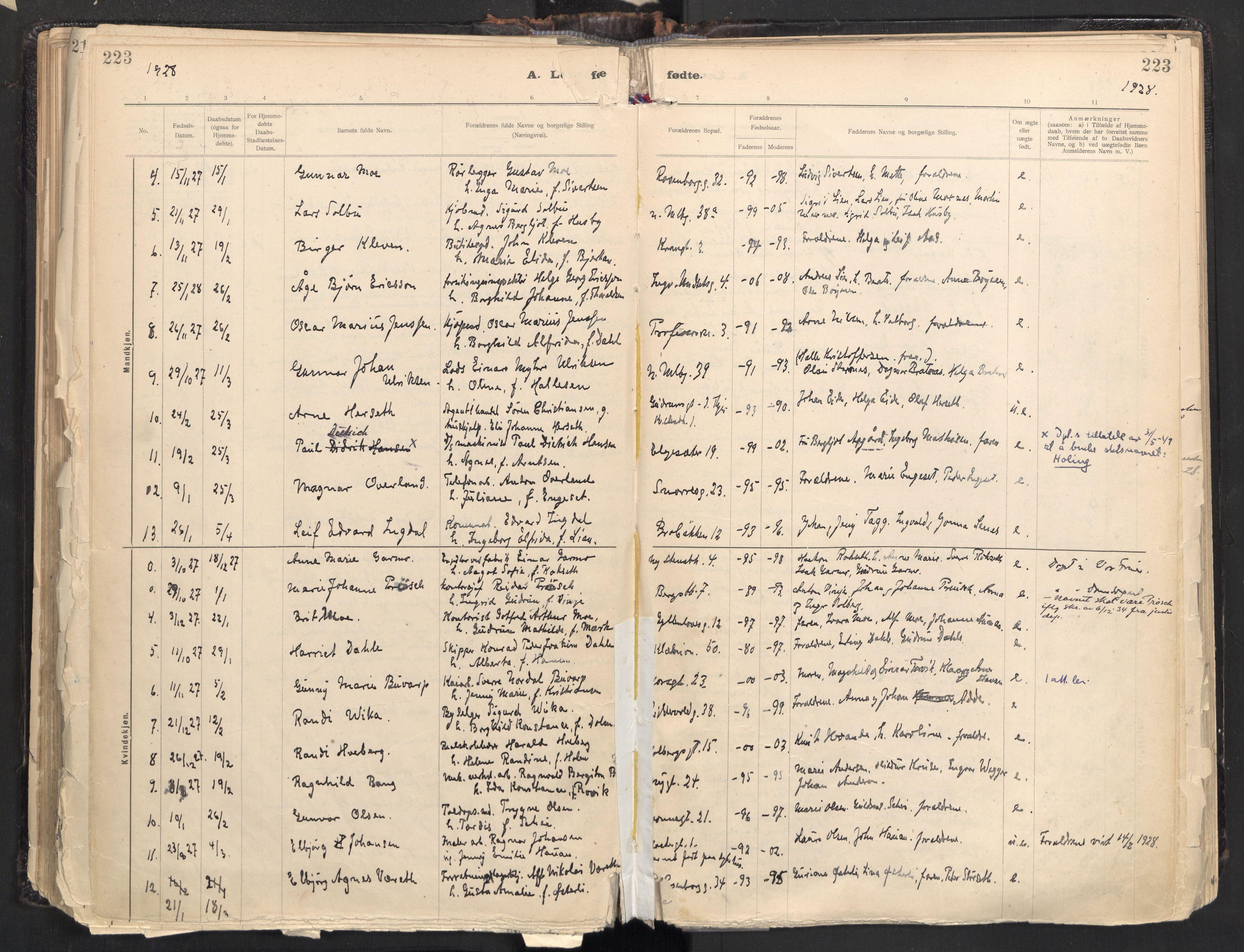 SAT, Ministerialprotokoller, klokkerbøker og fødselsregistre - Sør-Trøndelag, 604/L0205: Ministerialbok nr. 604A25, 1917-1932, s. 223