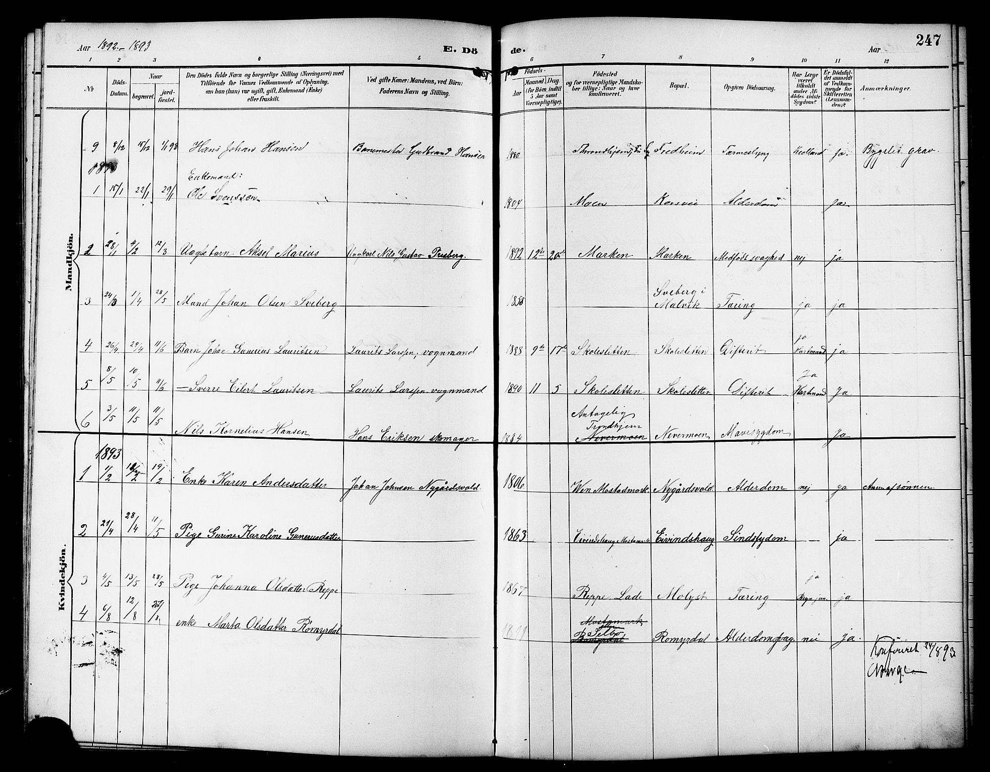 SAT, Ministerialprotokoller, klokkerbøker og fødselsregistre - Sør-Trøndelag, 617/L0431: Klokkerbok nr. 617C01, 1889-1910, s. 247