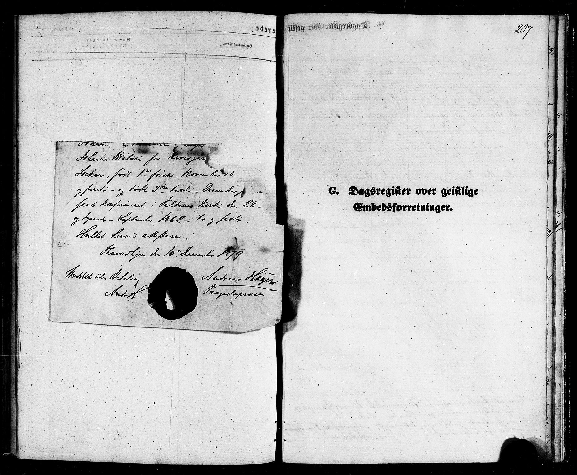 SAT, Ministerialprotokoller, klokkerbøker og fødselsregistre - Nordland, 803/L0075: Klokkerbok nr. 803C02, 1867-1881, s. 237