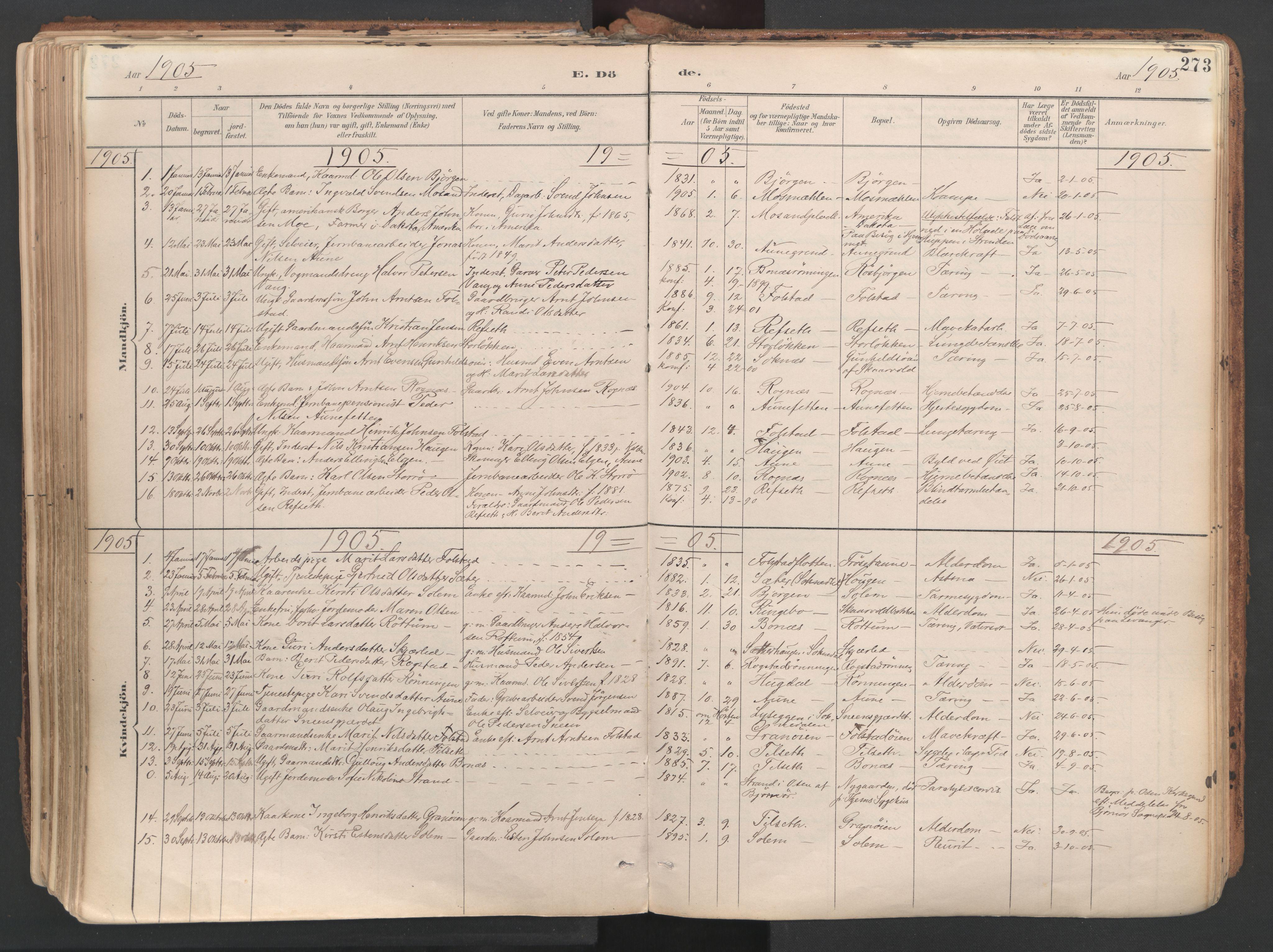 SAT, Ministerialprotokoller, klokkerbøker og fødselsregistre - Sør-Trøndelag, 687/L1004: Ministerialbok nr. 687A10, 1891-1923, s. 273