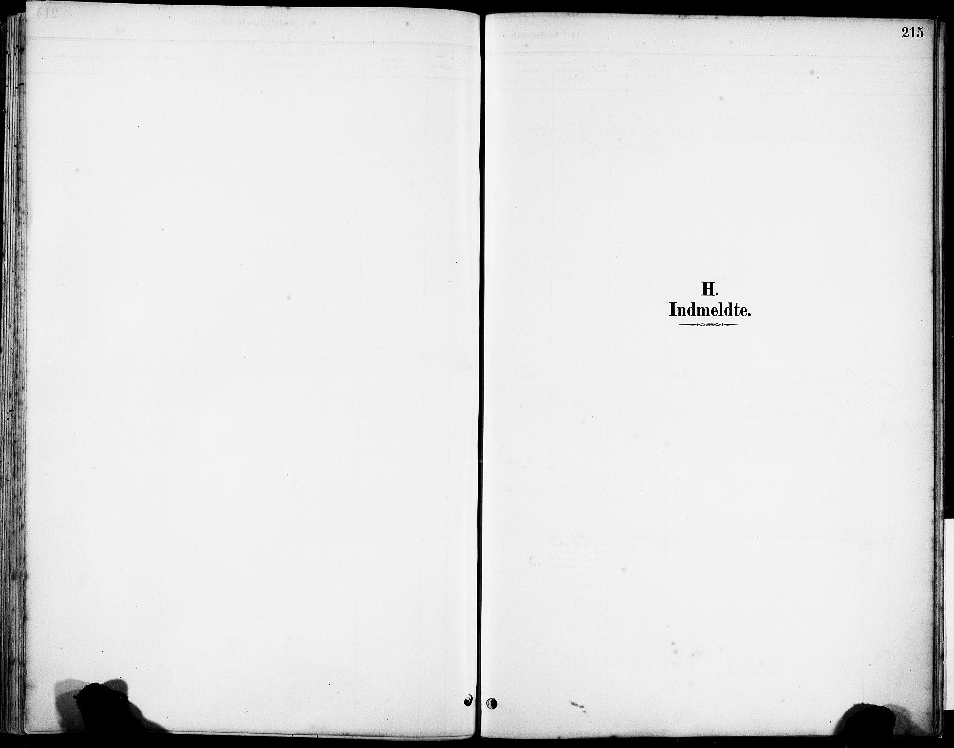 SAST, Klepp sokneprestkontor, 3/30BA/L0008: Ministerialbok nr. A 9, 1886-1919, s. 215