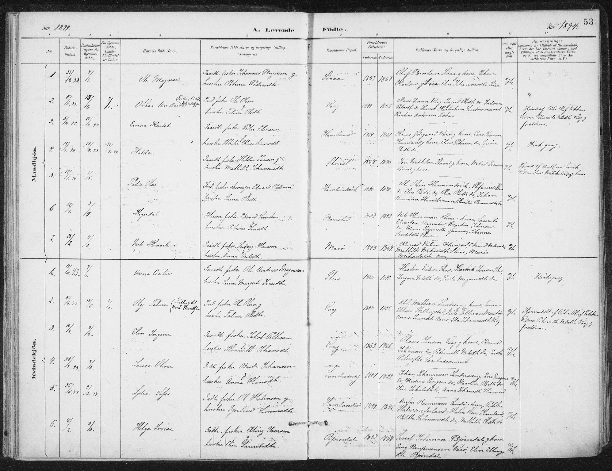 SAT, Ministerialprotokoller, klokkerbøker og fødselsregistre - Nord-Trøndelag, 784/L0673: Ministerialbok nr. 784A08, 1888-1899, s. 53
