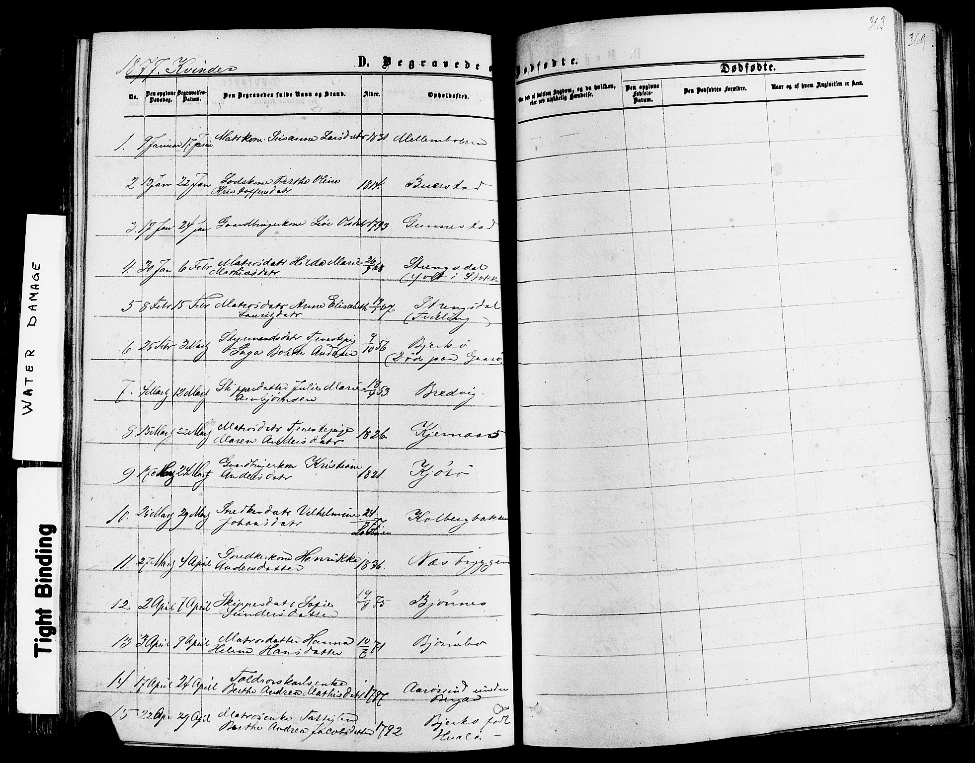 SAKO, Nøtterøy kirkebøker, F/Fa/L0007: Ministerialbok nr. I 7, 1865-1877, s. 363