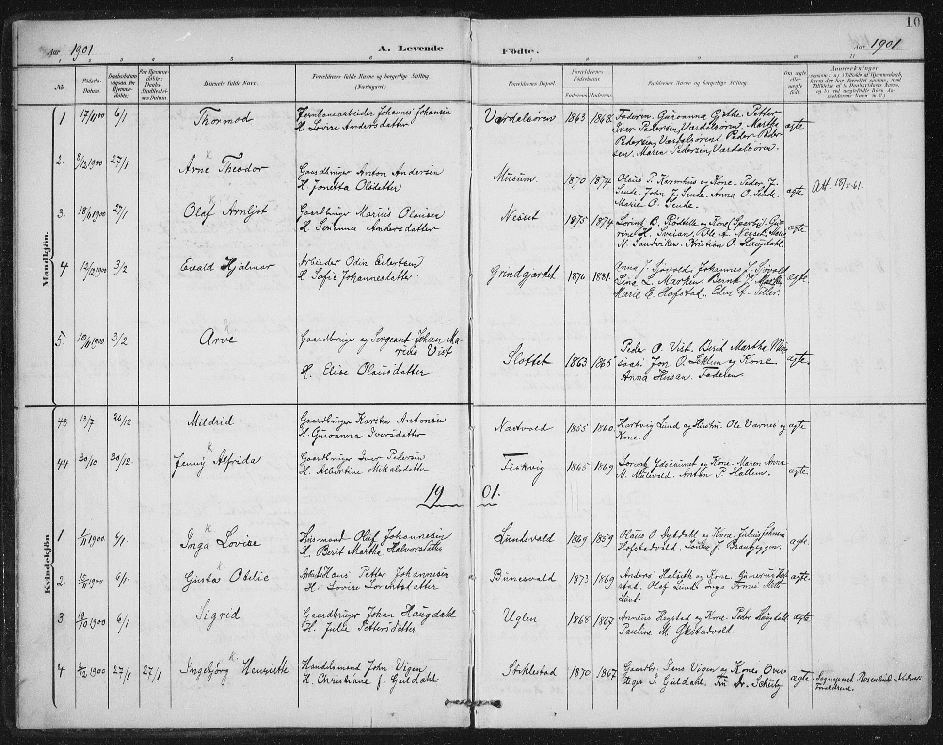 SAT, Ministerialprotokoller, klokkerbøker og fødselsregistre - Nord-Trøndelag, 723/L0246: Ministerialbok nr. 723A15, 1900-1917, s. 10