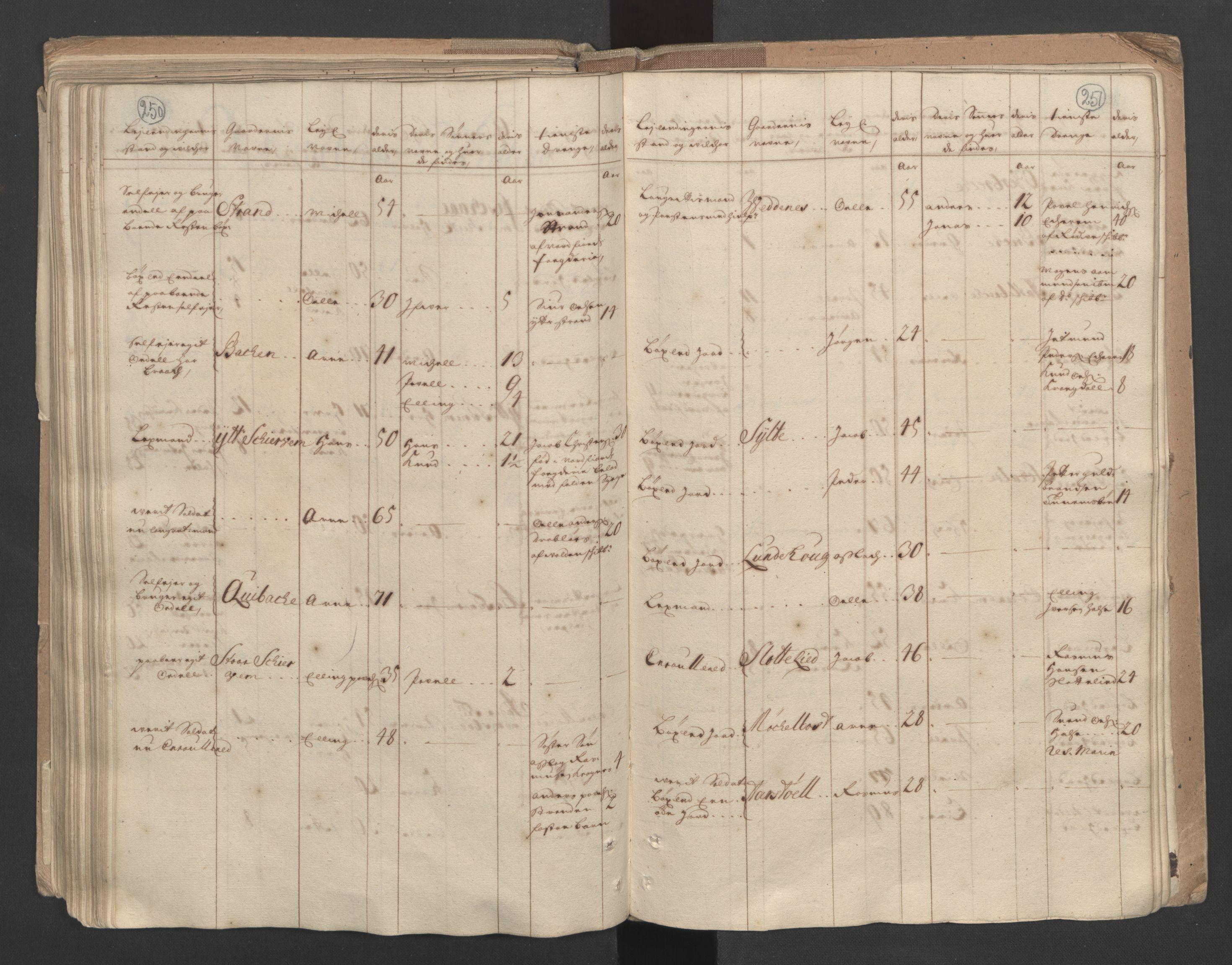 RA, Manntallet 1701, nr. 10: Sunnmøre fogderi, 1701, s. 250-251