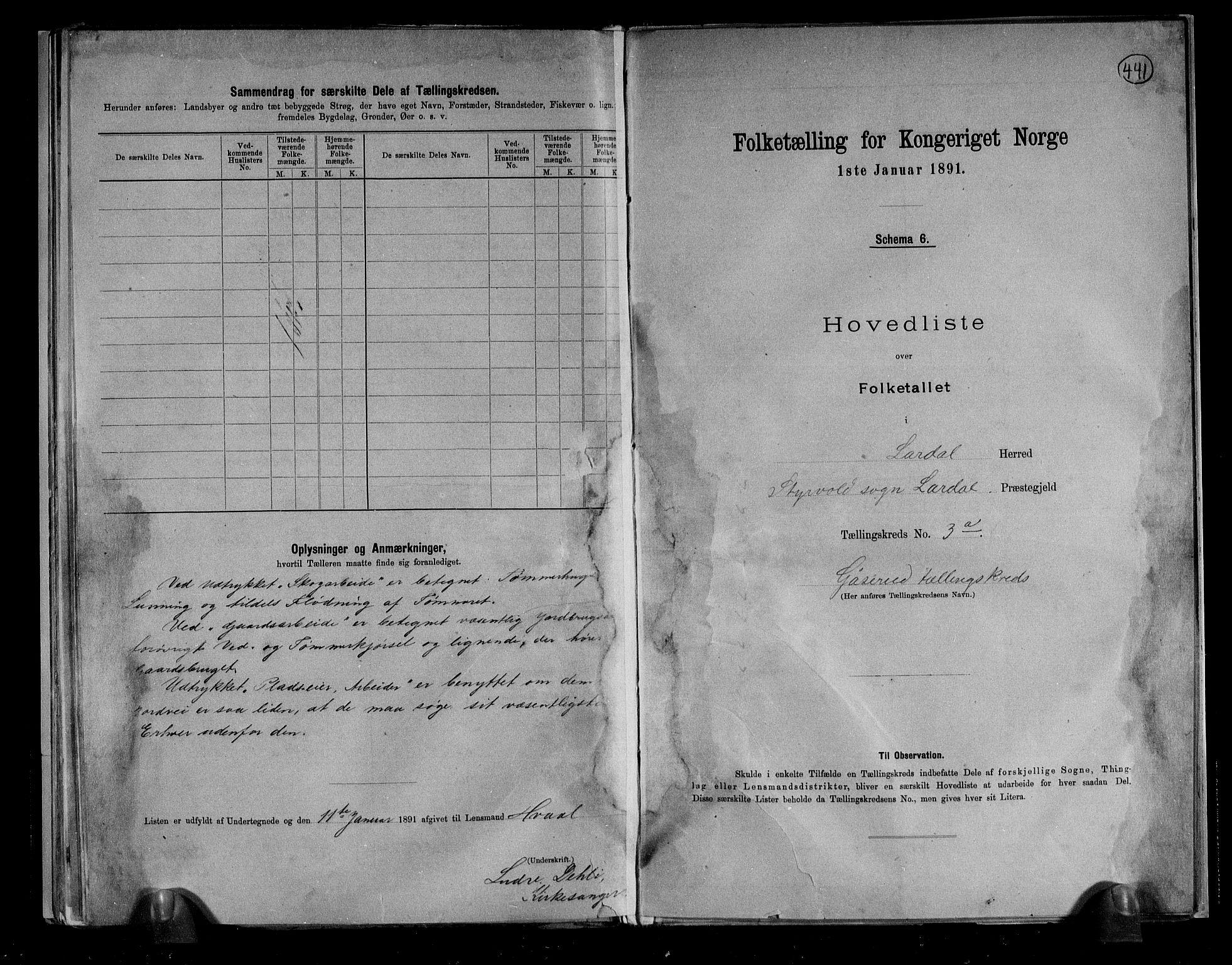 RA, Folketelling 1891 for 0728 Lardal herred, 1891, s. 10