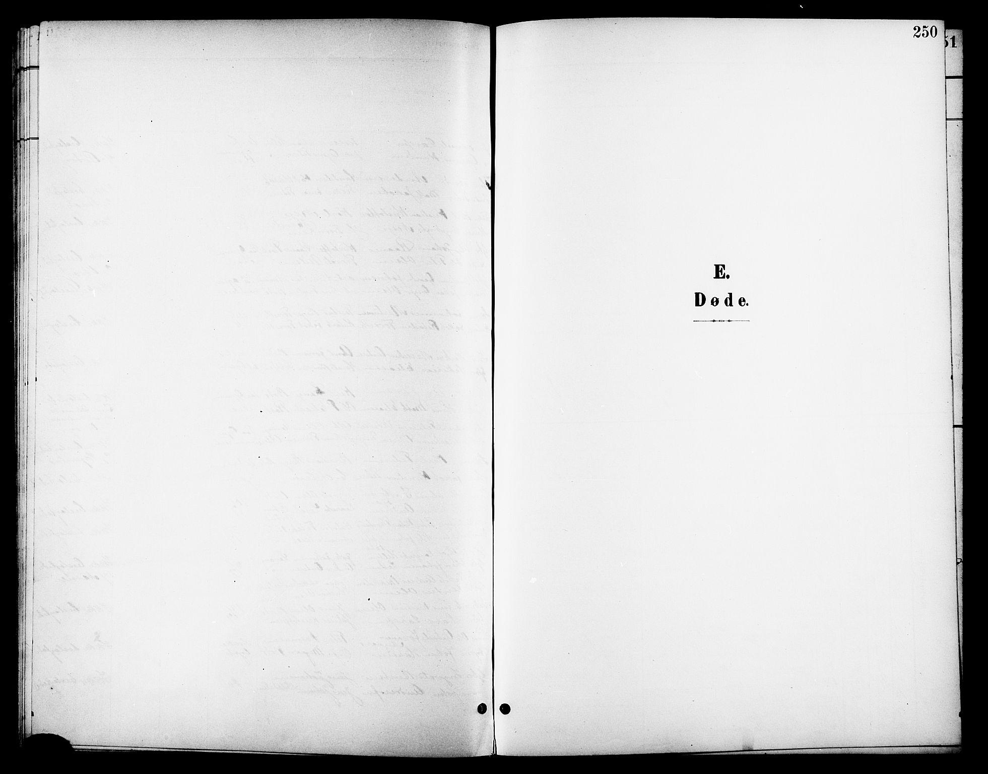 SAT, Ministerialprotokoller, klokkerbøker og fødselsregistre - Nordland, 801/L0033: Klokkerbok nr. 801C08, 1898-1910, s. 250