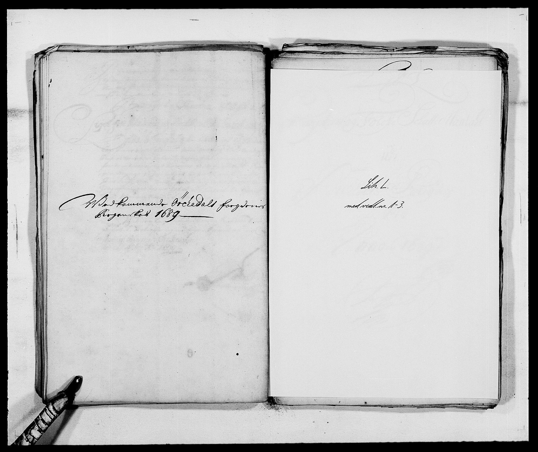 RA, Rentekammeret inntil 1814, Reviderte regnskaper, Fogderegnskap, R58/L3936: Fogderegnskap Orkdal, 1689-1690, s. 118