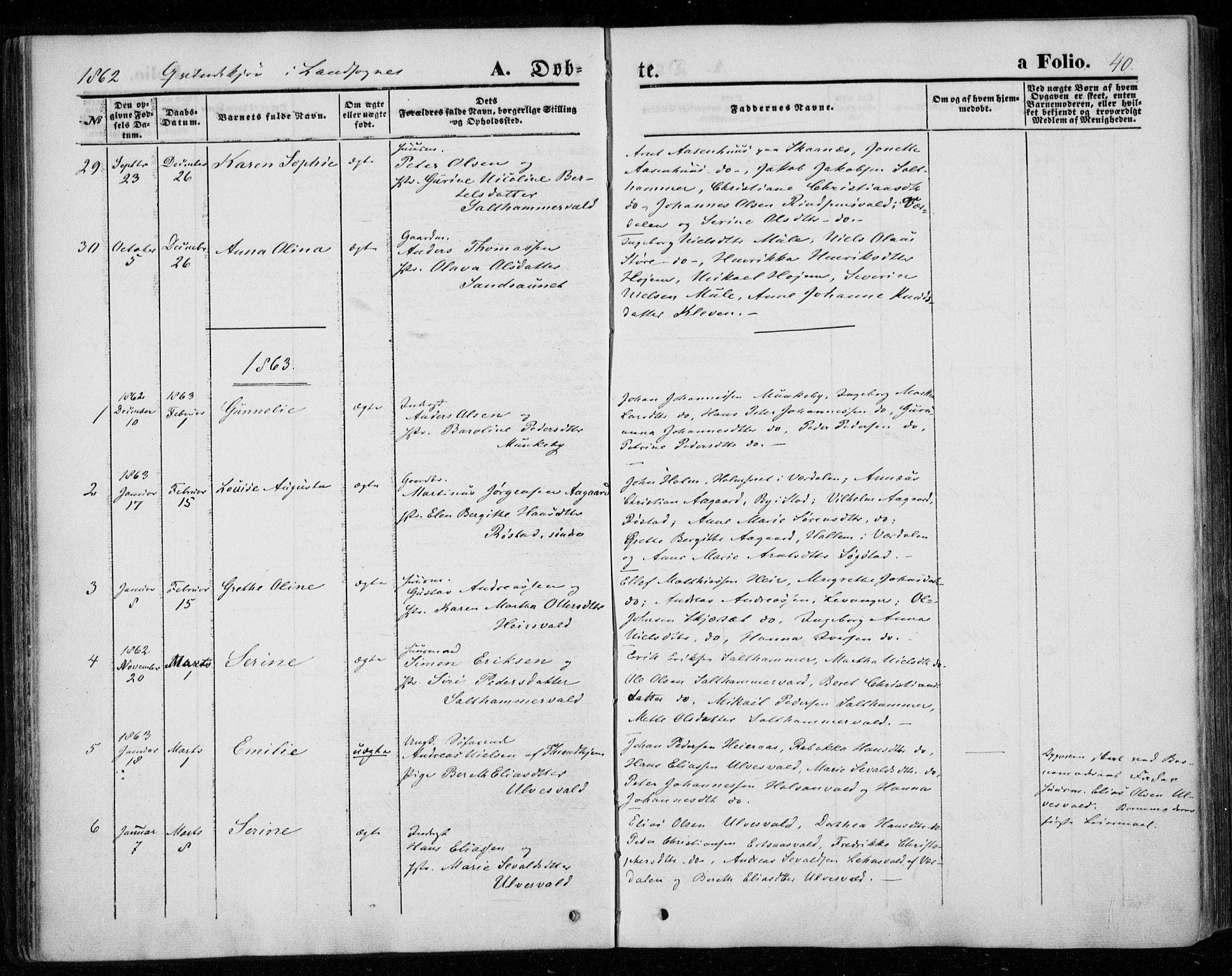 SAT, Ministerialprotokoller, klokkerbøker og fødselsregistre - Nord-Trøndelag, 720/L0184: Ministerialbok nr. 720A02 /2, 1855-1863, s. 40