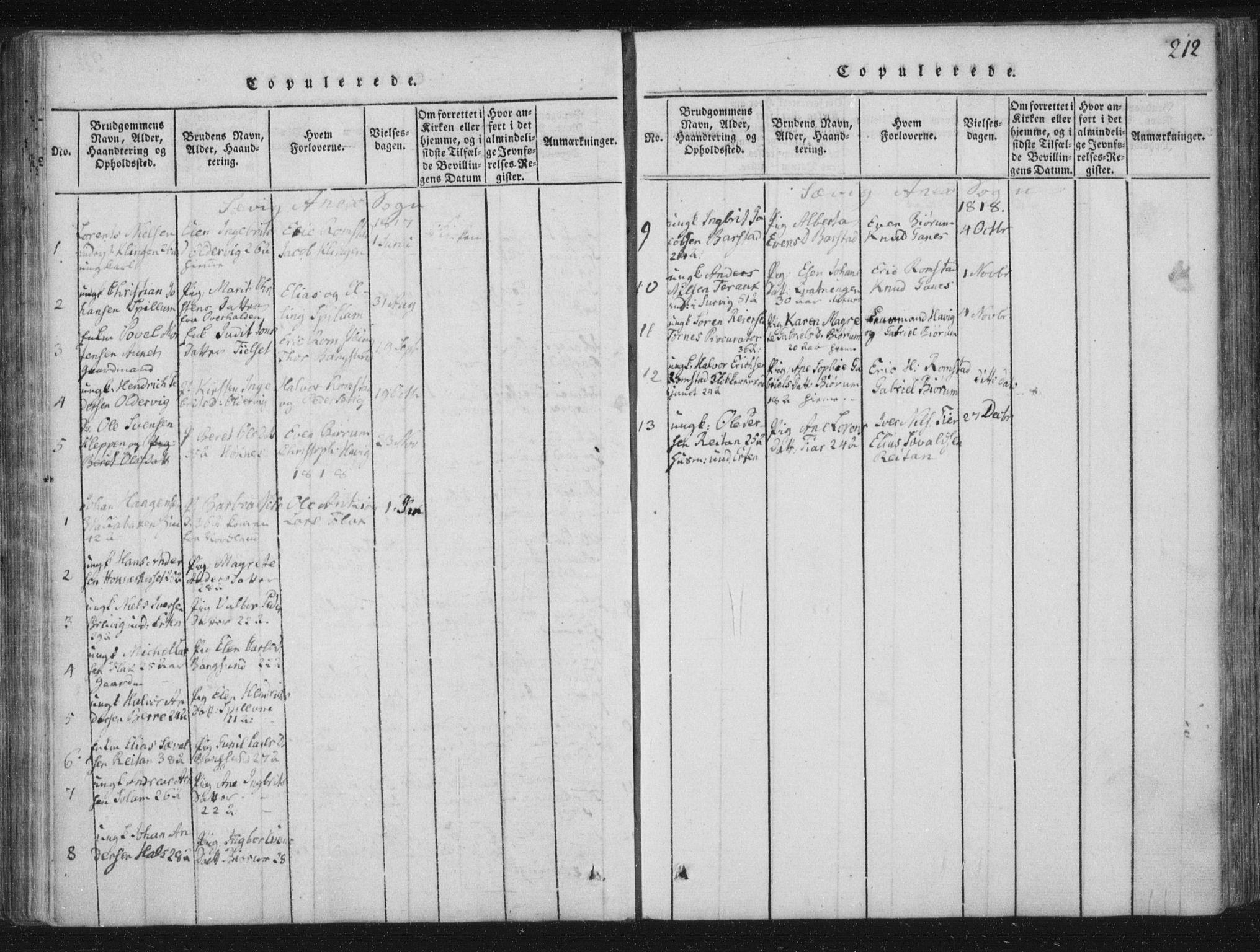 SAT, Ministerialprotokoller, klokkerbøker og fødselsregistre - Nord-Trøndelag, 773/L0609: Ministerialbok nr. 773A03 /4, 1815-1818, s. 212