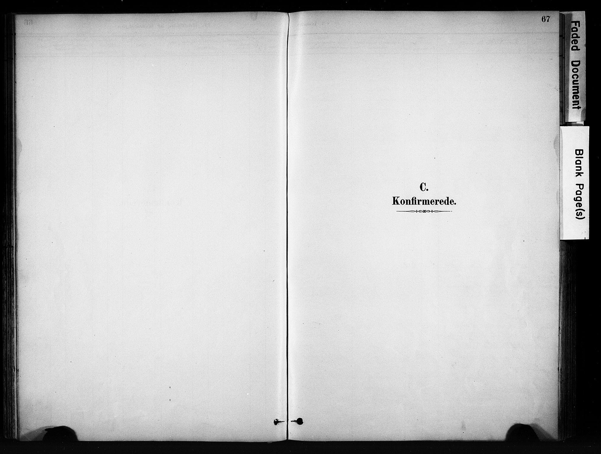 SAH, Vang prestekontor, Valdres, Ministerialbok nr. 9, 1882-1914, s. 67