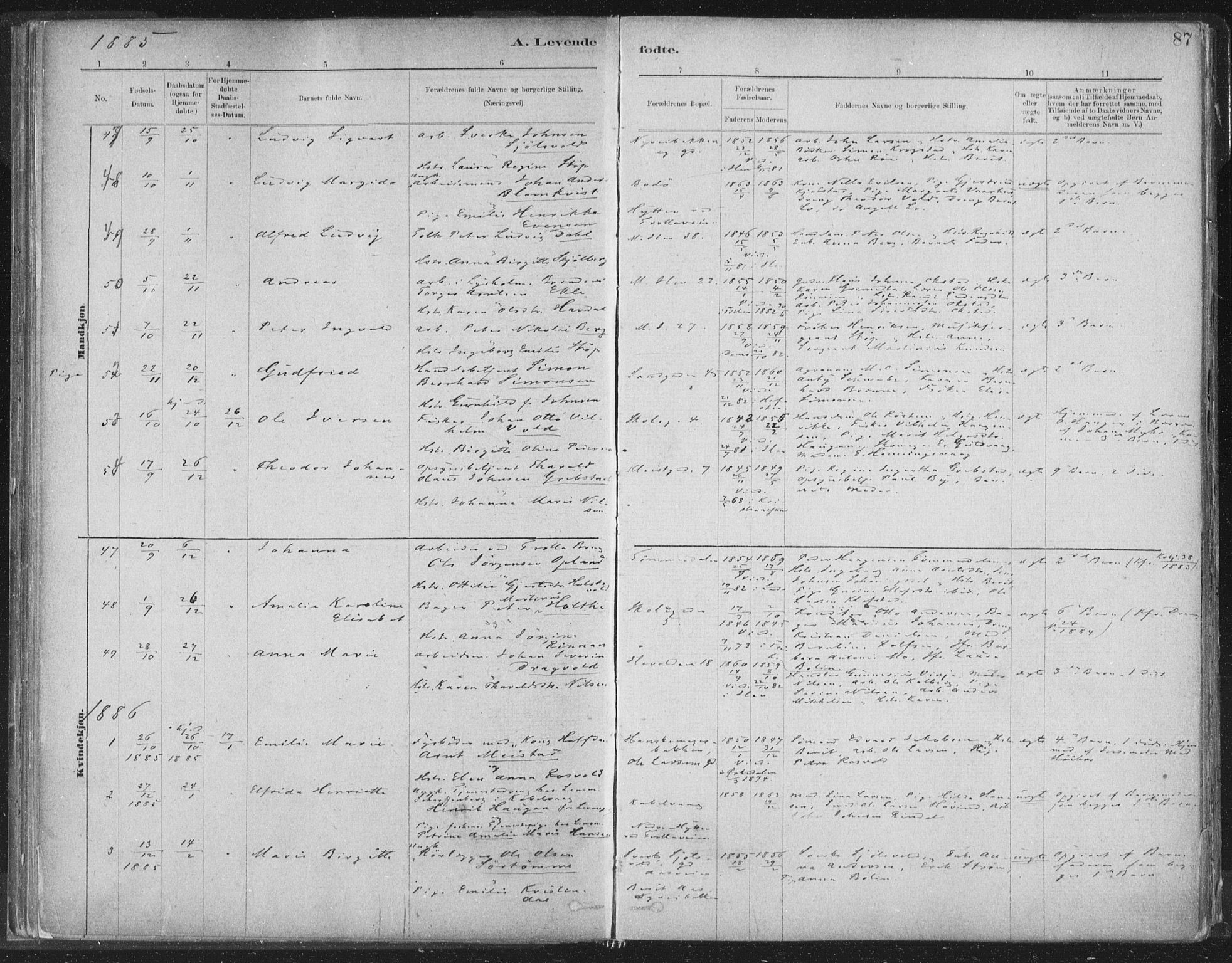 SAT, Ministerialprotokoller, klokkerbøker og fødselsregistre - Sør-Trøndelag, 603/L0162: Ministerialbok nr. 603A01, 1879-1895, s. 87
