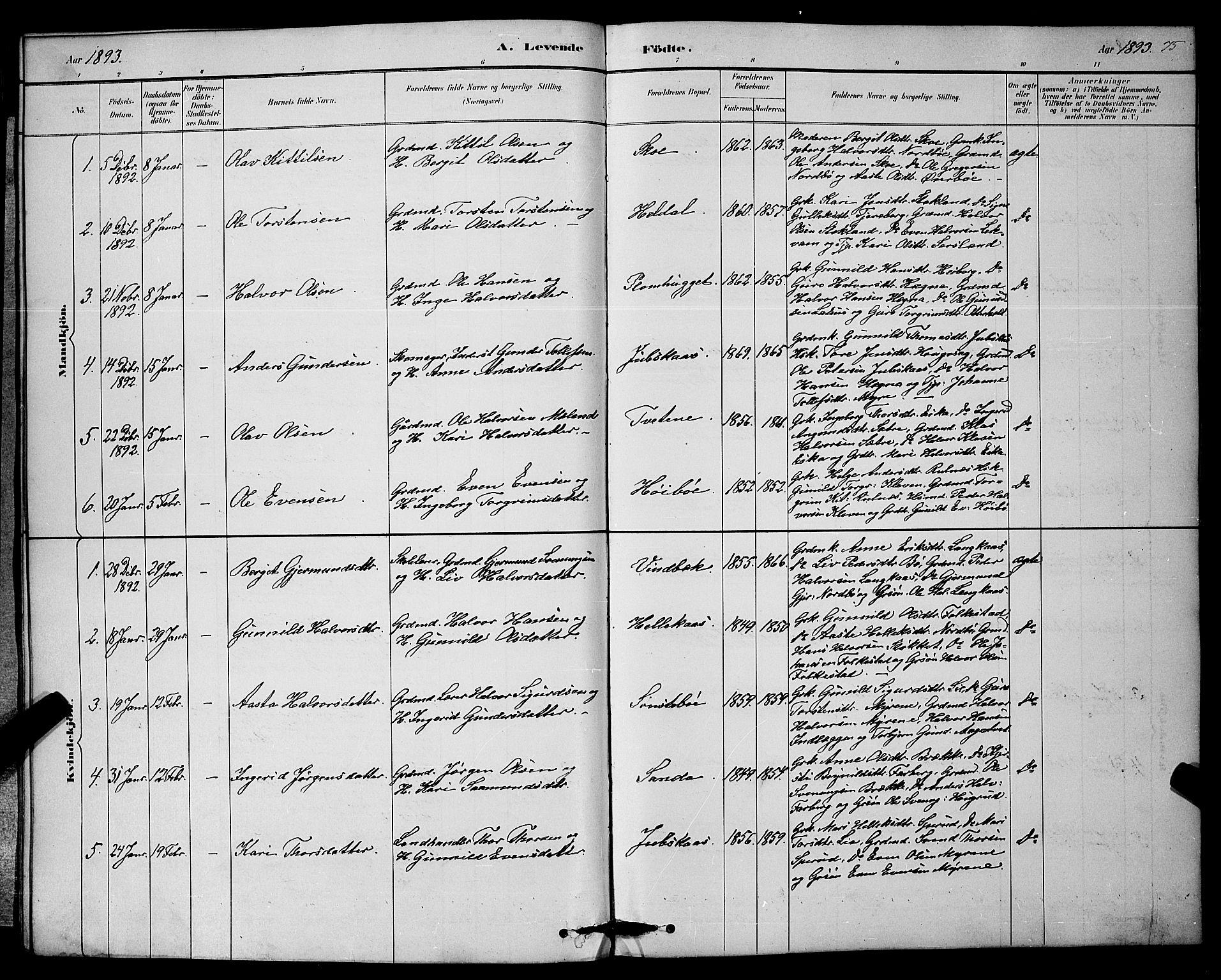 SAKO, Bø kirkebøker, G/Ga/L0005: Klokkerbok nr. 5, 1883-1897, s. 75