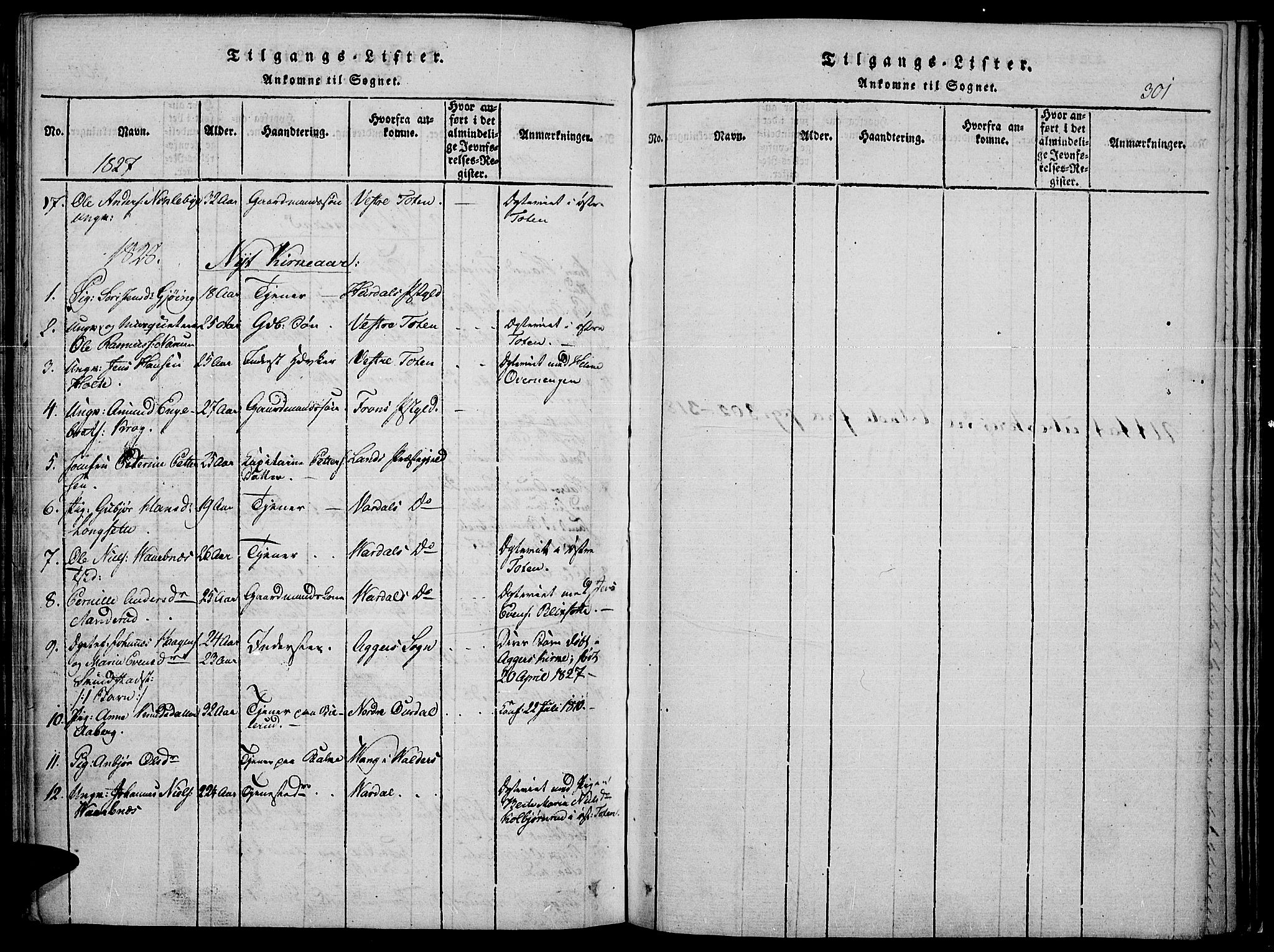 SAH, Toten prestekontor, Ministerialbok nr. 10, 1820-1828, s. 301
