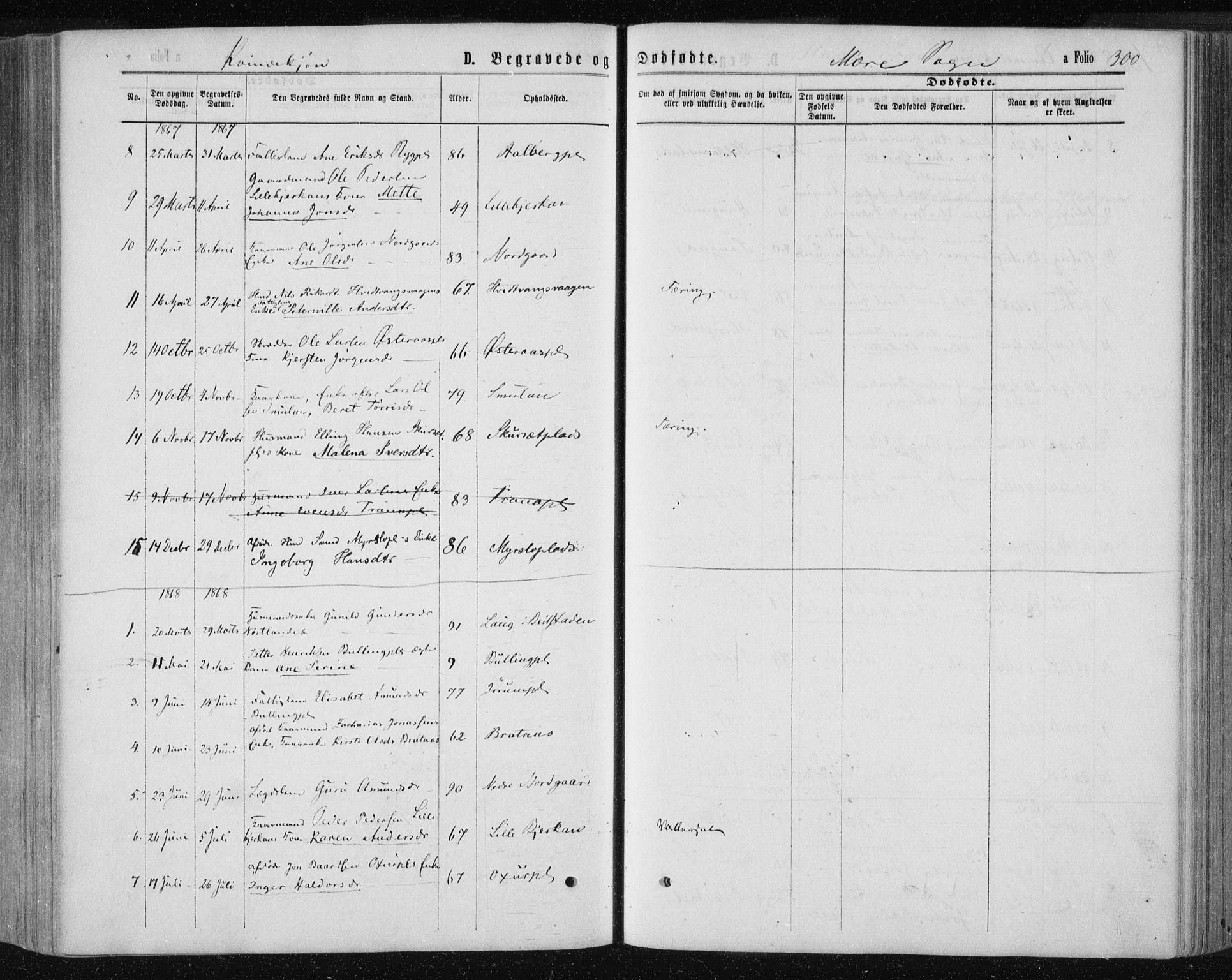 SAT, Ministerialprotokoller, klokkerbøker og fødselsregistre - Nord-Trøndelag, 735/L0345: Ministerialbok nr. 735A08 /1, 1863-1872, s. 300