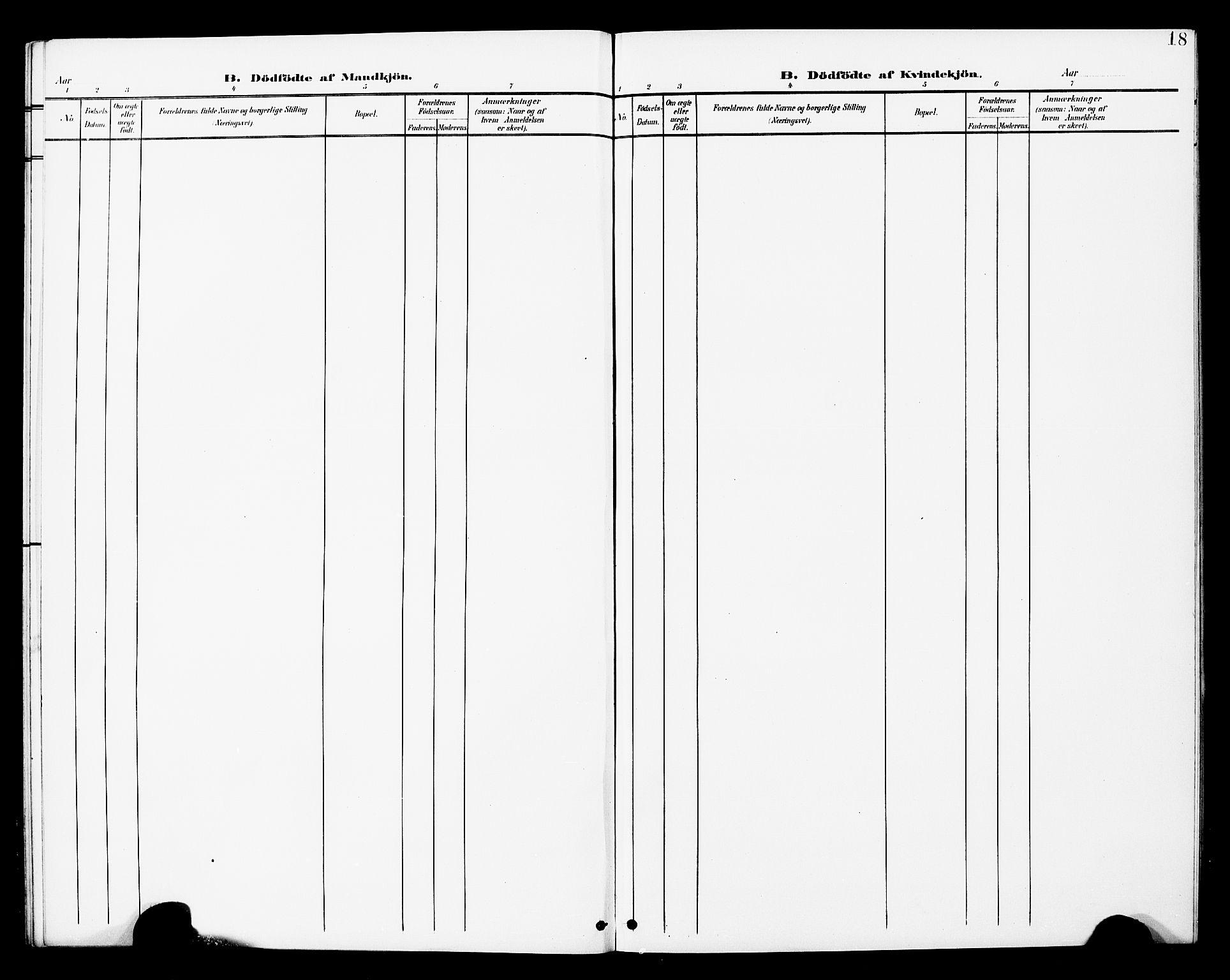 SAT, Ministerialprotokoller, klokkerbøker og fødselsregistre - Nord-Trøndelag, 748/L0464: Ministerialbok nr. 748A01, 1900-1908, s. 18